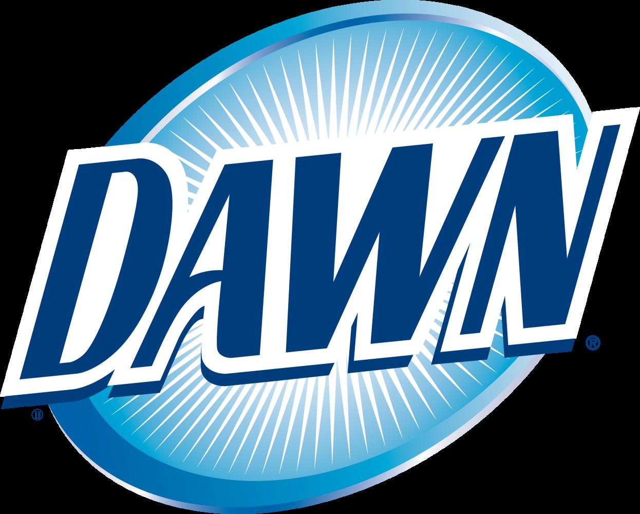 Dawn_logo_2008.png