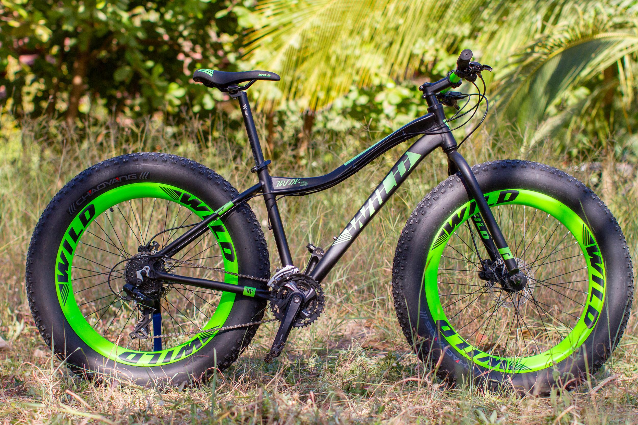 Ciclo-2.jpg