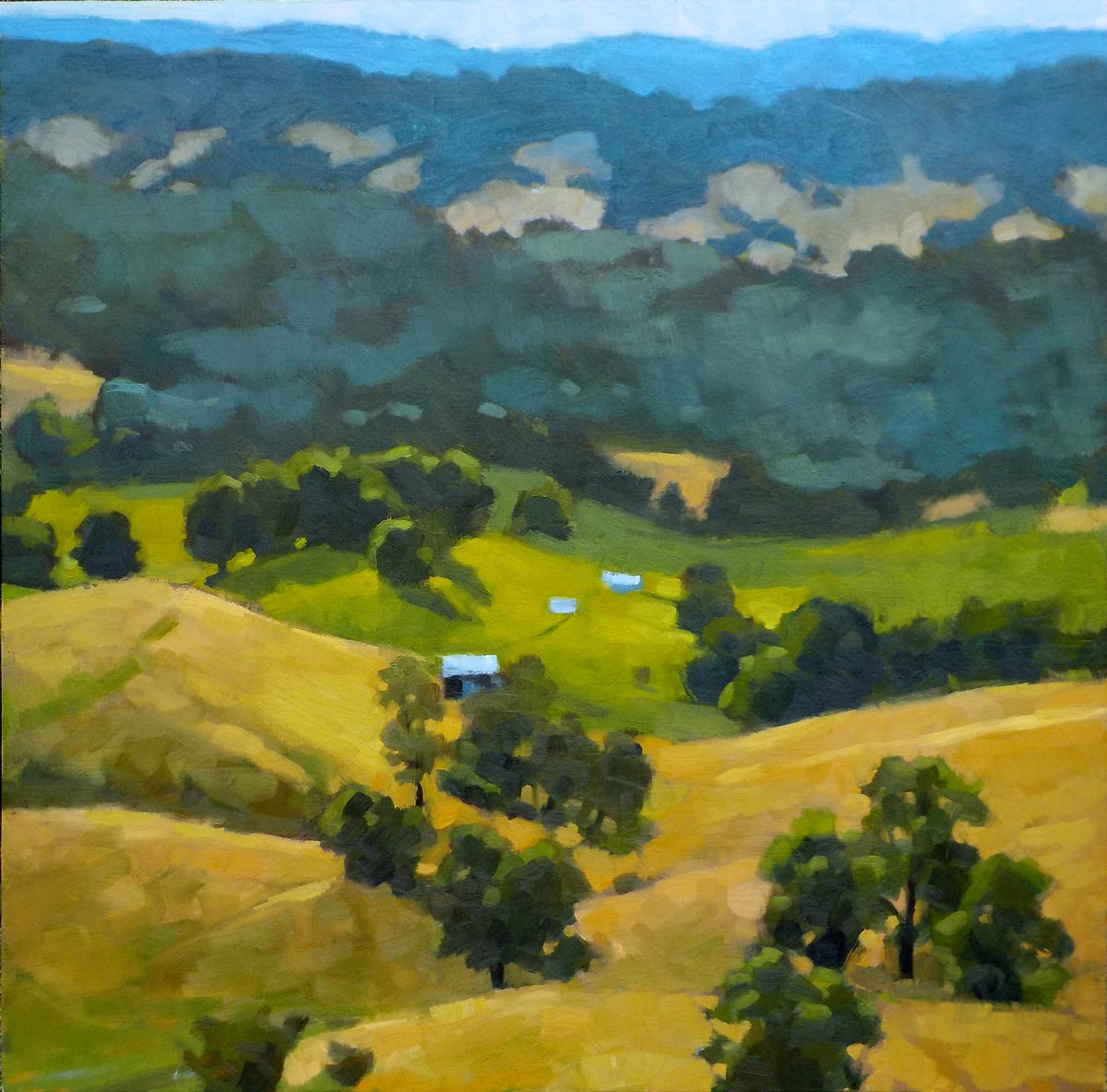 Debra Sheffer    Mount Sidney, VA    Plein Air Paintings     Member Since June 2018      Website      Since I spend weekdays in a deadline-driven office, an environment without a view of the outside world, I crave time to absorb the beauty of quiet spaces out of doors. The practice of painting requires disciplined observation. Most of my paintings begin on location and the practice has changed the way I see the world. In my mind's eye, I'm making paintings as I look around. While riding in the car I'm often transfixed by way light falls across the land and I think about how I'd lay the colors down.  My approach begins with tonal brush marks on the canvas. I distill my looking to a value study initially, balancing the darks and lights, sensibilities informed by years in graphic design. Some on-site sketches are used to inform larger studio works, but painting out of doors is always my preference.  Landscape painters who have influenced my work include California Impressionists Edgar Payne and William Wendt, also Fairfield Porter and Jean-Baptiste-Camille Corot. Increasingly I'm drawn to work with more abstracted shapes and a somewhat limited palette.  My work has been shown throughout the Shenandoah Valley region and is in private collections. Some pieces have been selected for juried shows including The American Landscape Show, Nelson Gallery and the annual Virginia Mennonite Retirement Community Show and is included in many local and regional shows. CoArt Gallery in Staunton and Reid Street Gallery in Chatham, Va. currently exhibit my work.