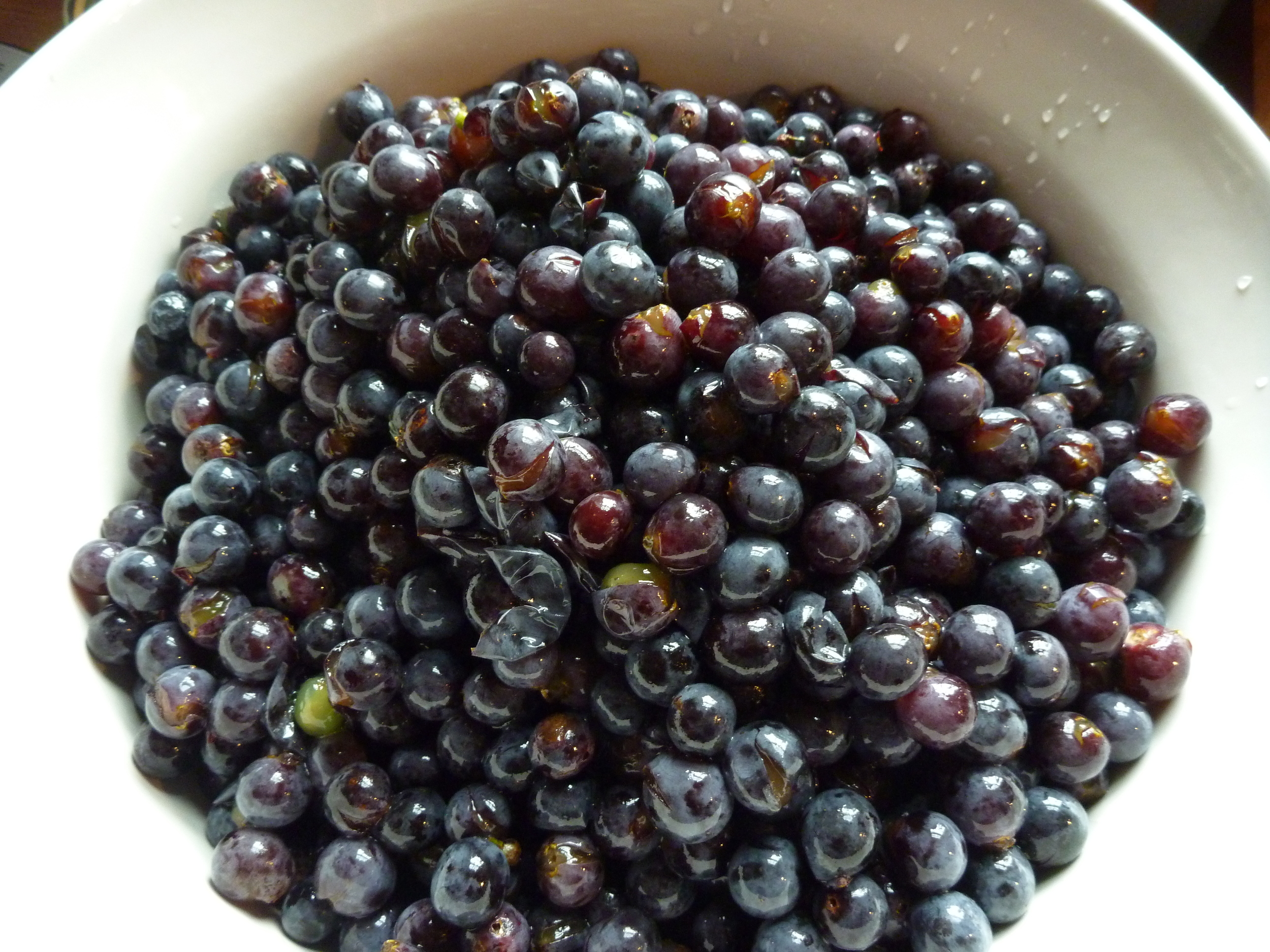 Grape_Jam_-_Concord_Grapes_washed.jpg