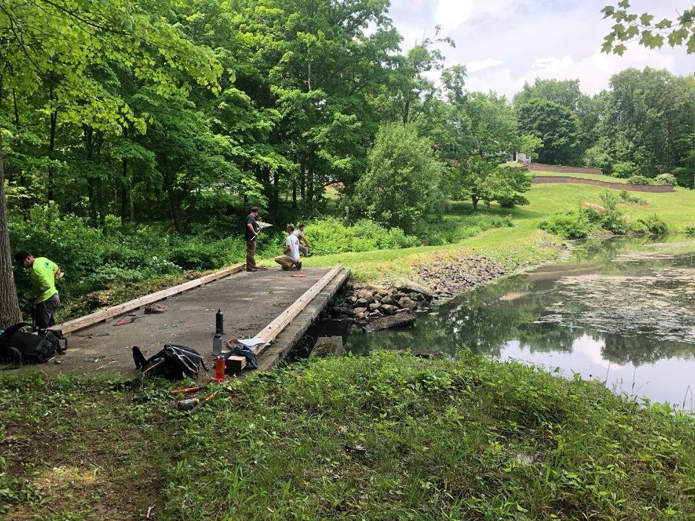 RMF-Dam-Cleanup-2018-4.jpg