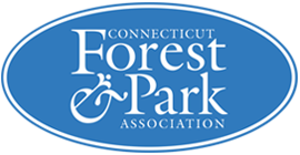 CT Forest & Park Association - Protecting open spaces in CT for future generations.https://www.ctwoodlands.org