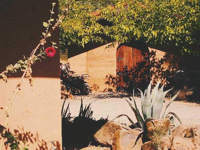 Winery-door-succulent-500.jpg