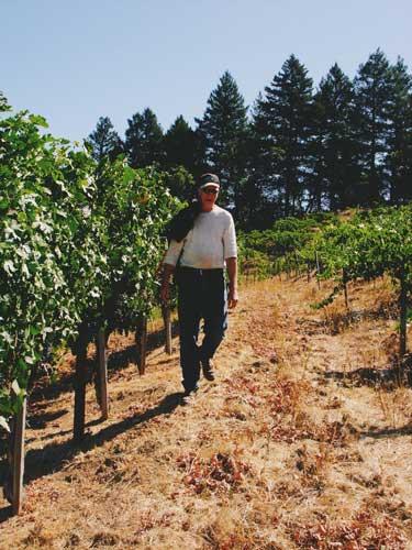 Bill-vineyards-vertical-500.jpg