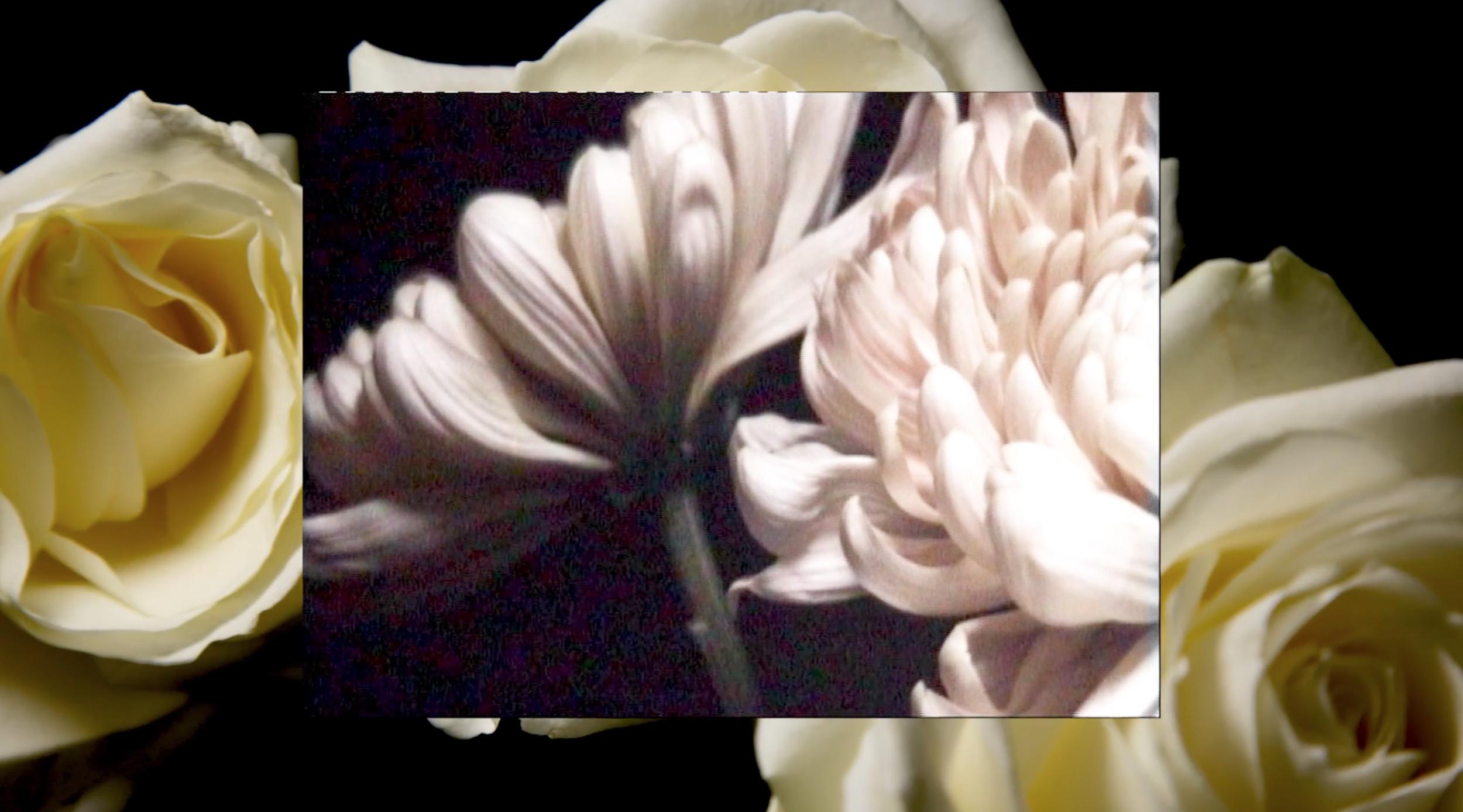 Screen Shot 2019-03-19 at 12.34.59.png