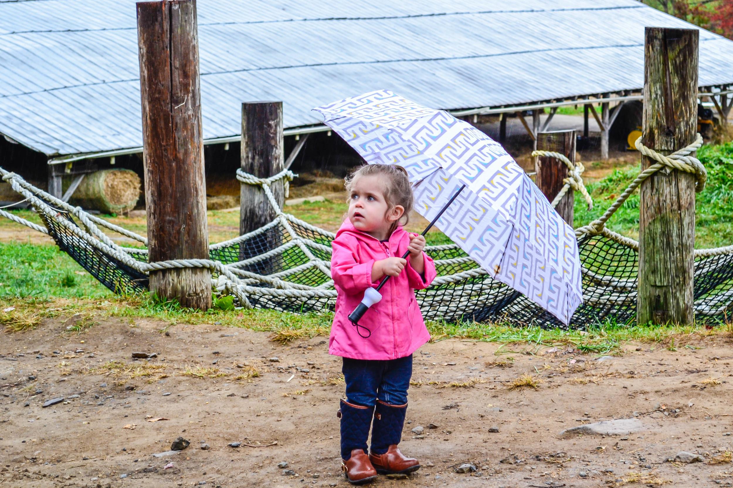 brook umbrella redo web_DSC0011.jpg