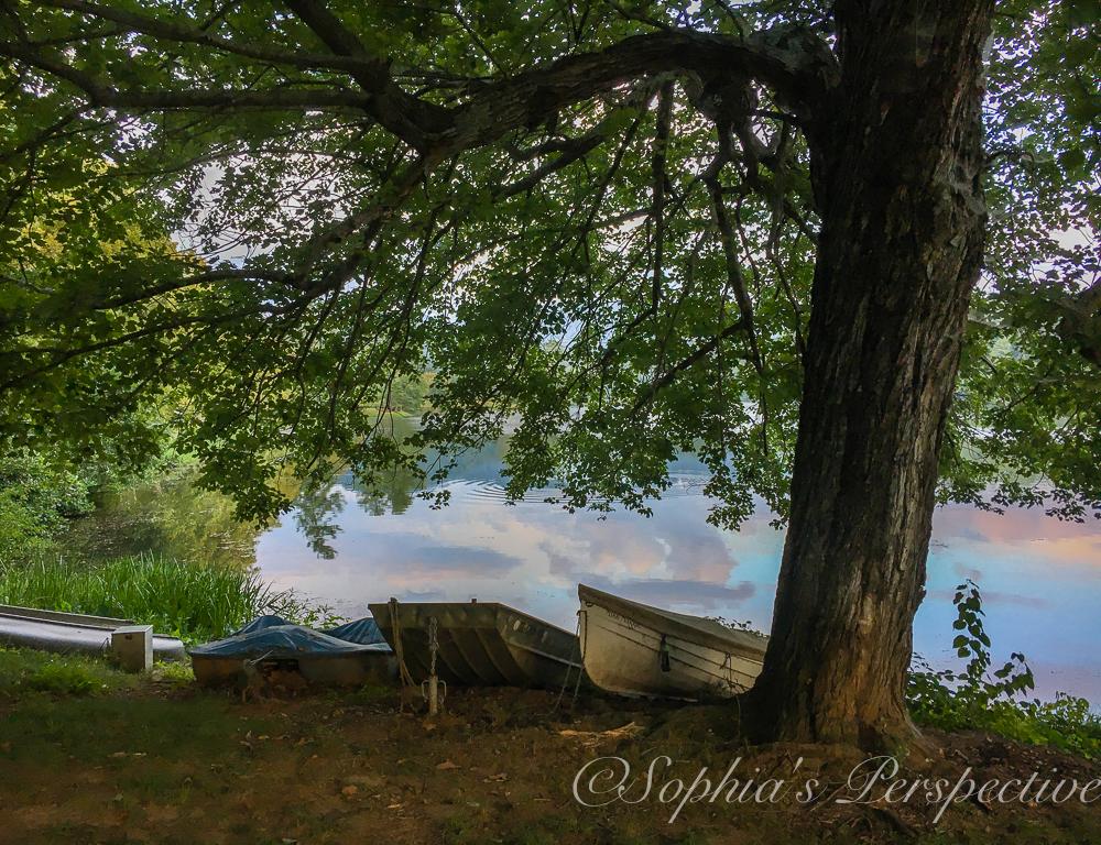 boat at beaver lake.jpg