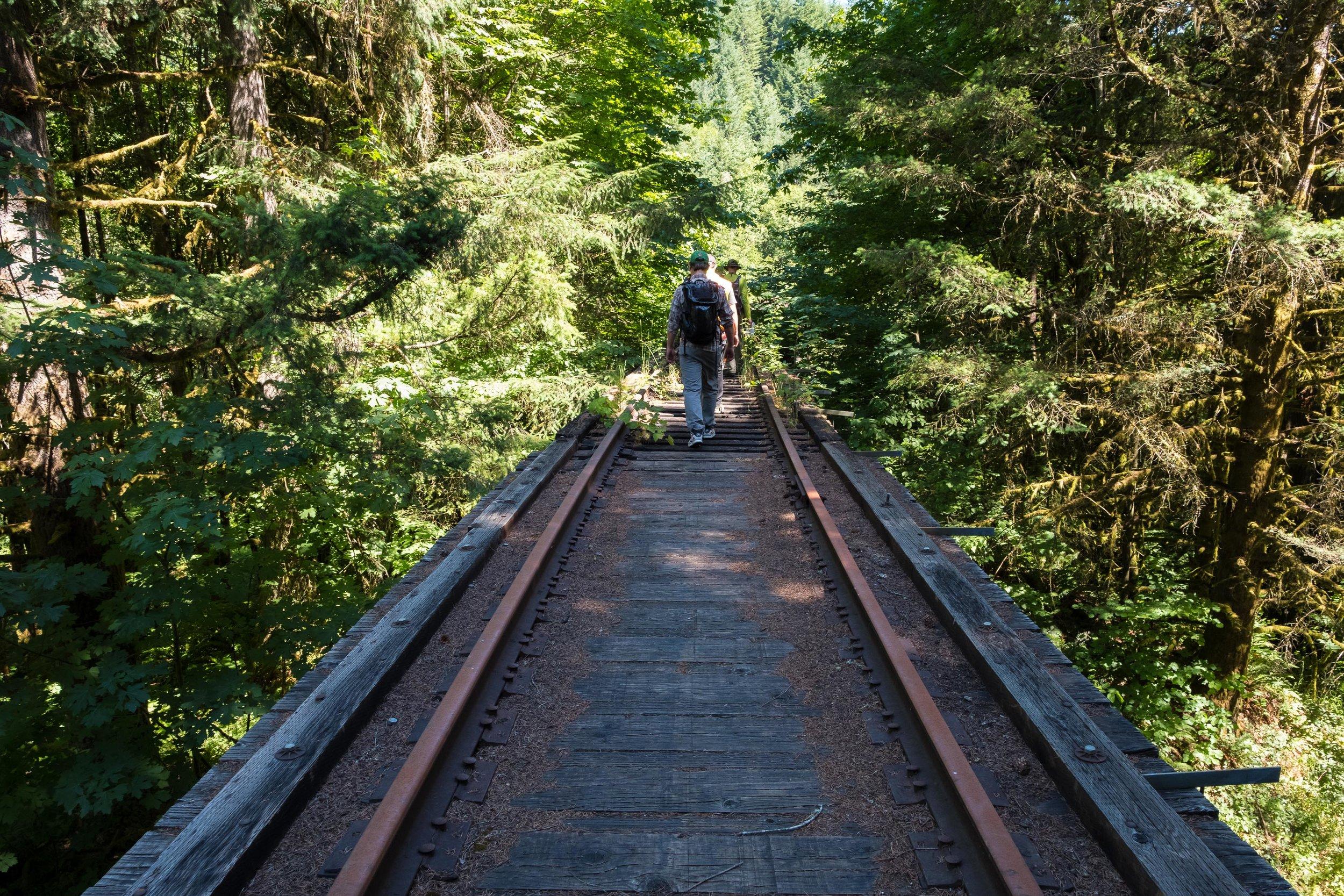 High Trestle in the Woods.jpg