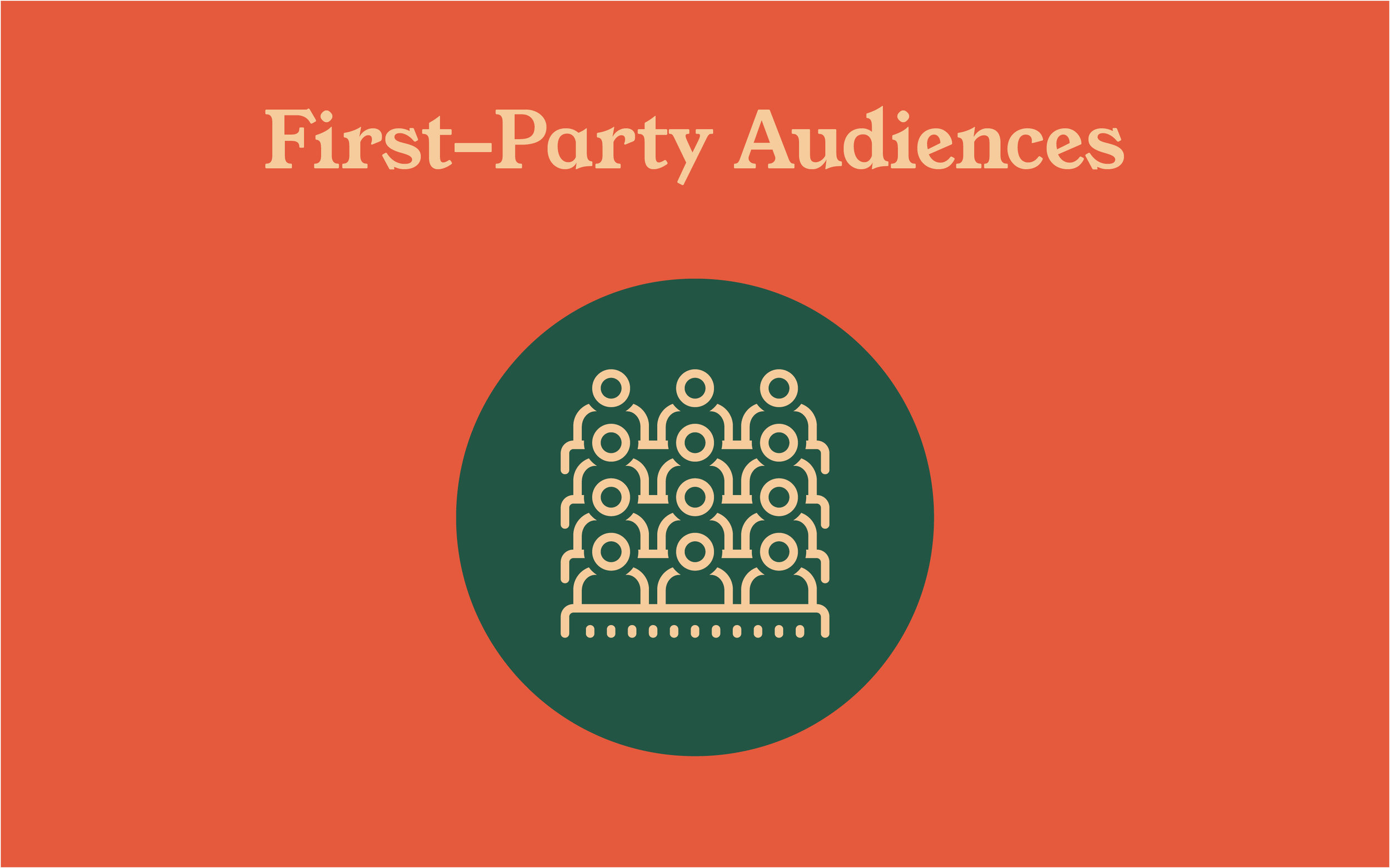 first party audience graphic.jpg