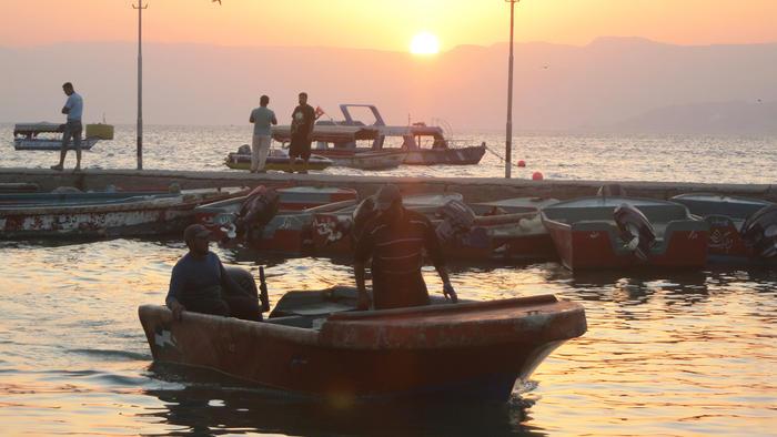 Fishermen come back with swordfish, tuna and sardines, sometimes even mako shark.