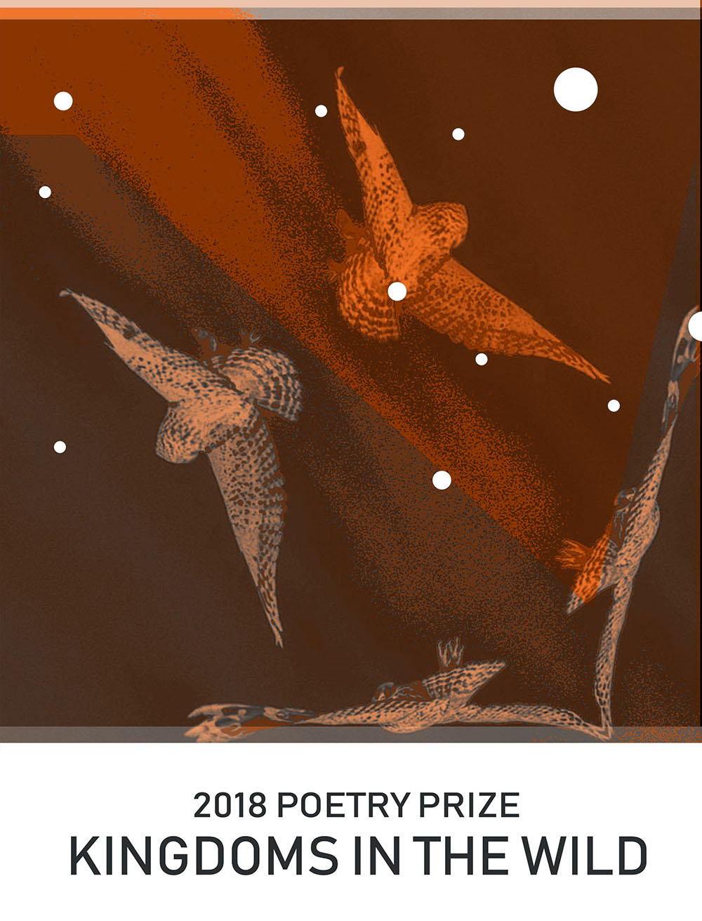 2018 - CALL FOR POETRY PRIZE 2.jpg