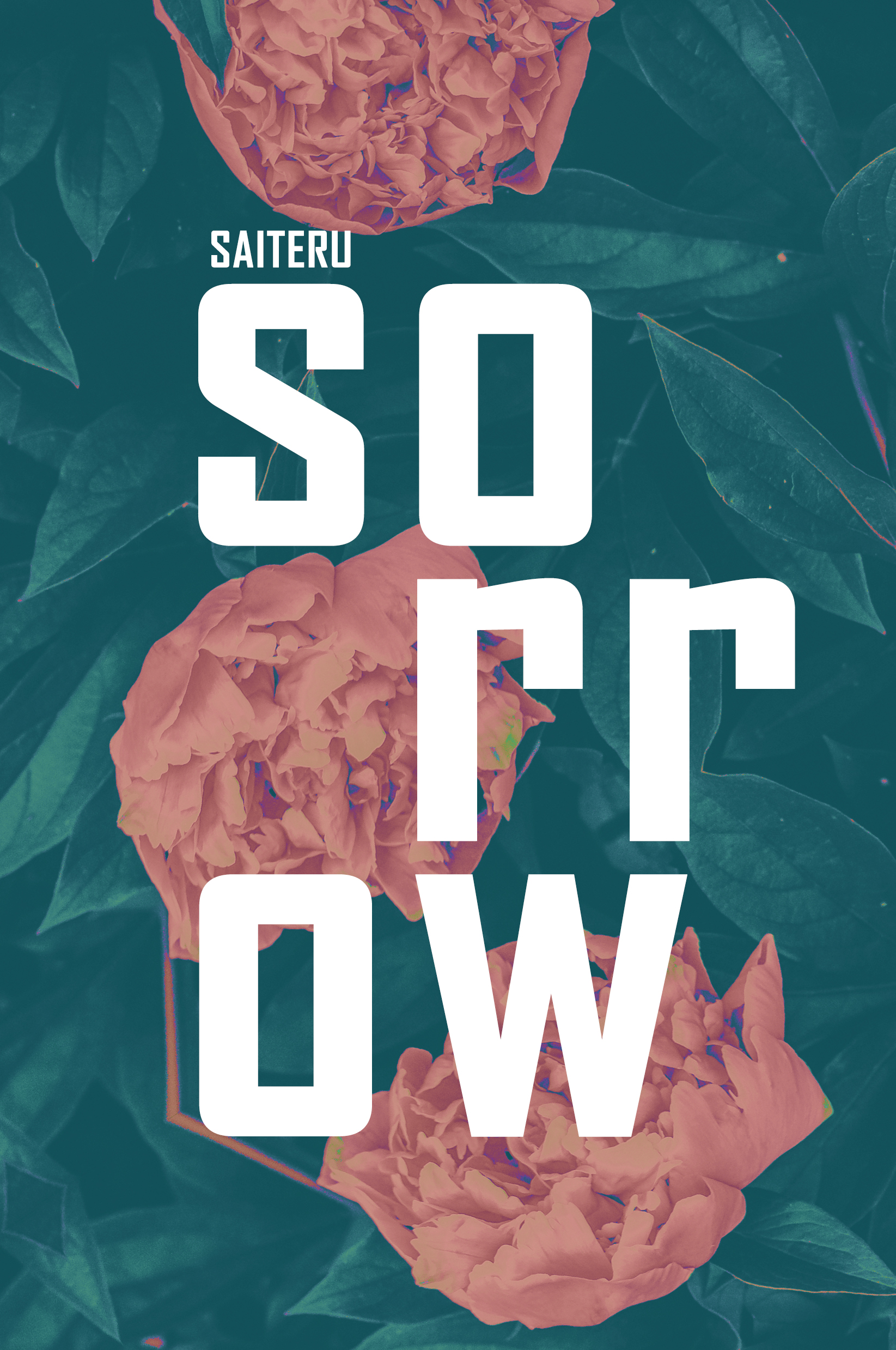 SORROW, tsh No. 1 - RELEASE DATE: JUN 4TH 2019:GENRE: Poetry, Fairy Tale Retelling, EpistolaryIn Sorrow, Cinderella is much more than a forgotten stepdaughter and chimney sweep. She is a girl with dreams of a bright future, despite the hardships she faces at home. Told in her own perspective through letters, poems, journal entries and more, Cinderella learns how to stand up for herself, how to reclaim her future and how to face her fears. She not only dares to dream of love and freedom, this Thornskinned Heroine dares to reach for it.
