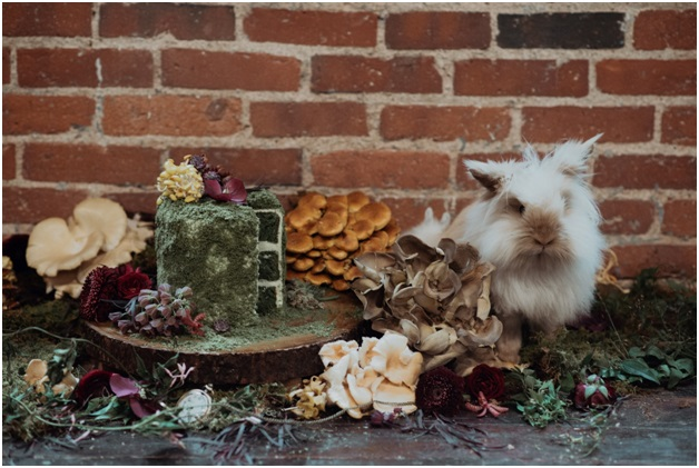 alice-in-wonderland-wedding-design.jpg