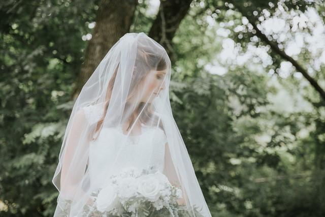 Bridal Veil Blusher Wedding Veil Bride Bridal Gown Wedding Gown Wedding Dress.jpg