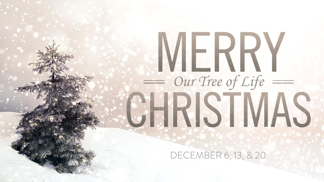 The Christmas Tree of Life.001.jpeg