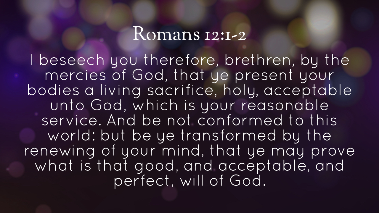Romans - Unwrapping the Gospel - Part 15.007.jpeg