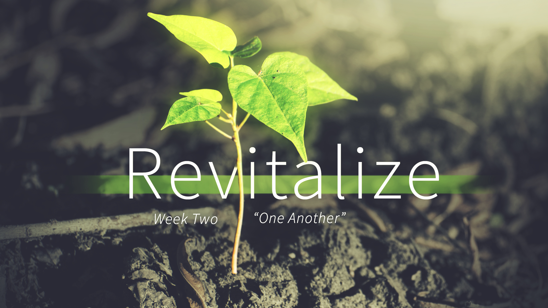 Revitalize - Week 2 - One Another copy.038.jpeg