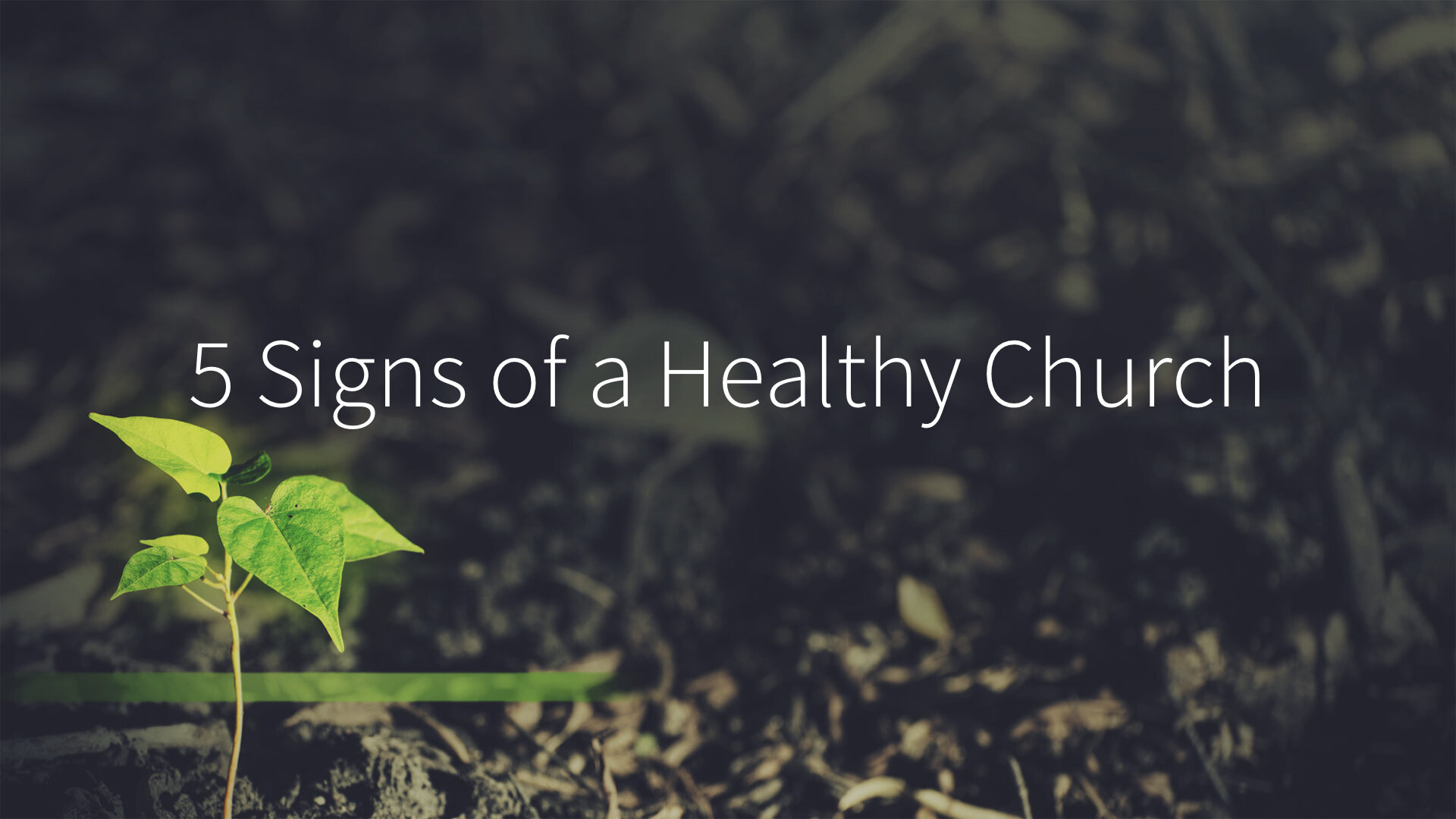 Revitalize - Week 3 - 5 Signs of a Healthy Church copy.009.jpeg