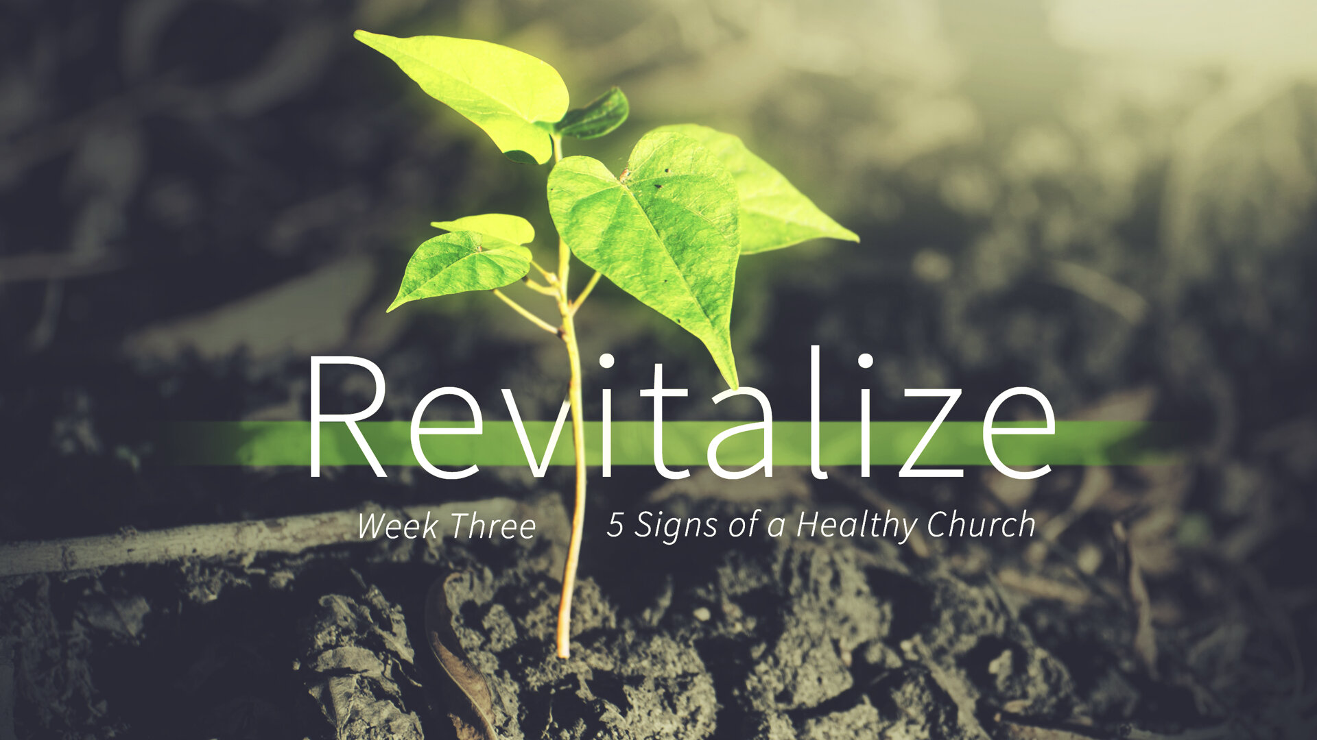 Revitalize - Week 3 - 5 Signs of a Healthy Church copy.032.jpeg