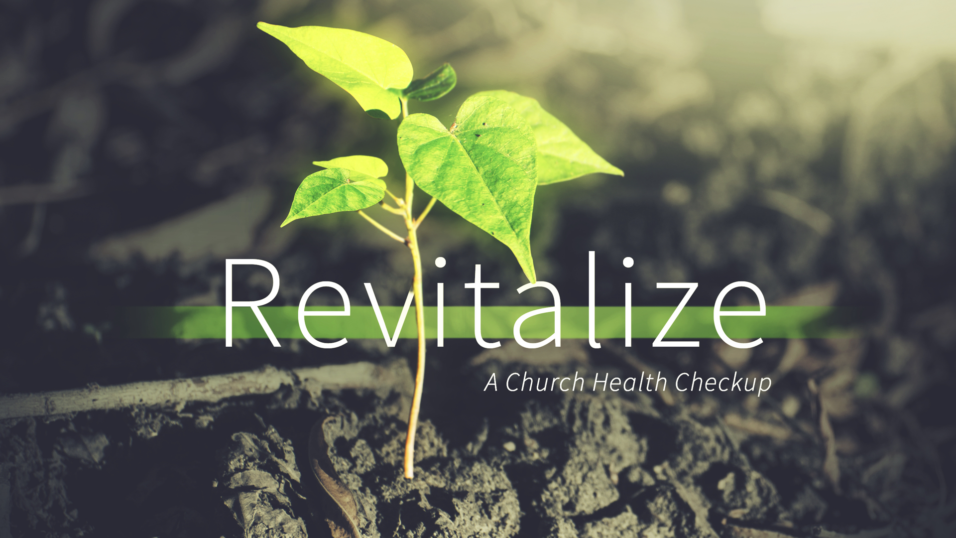 Revitalize - Week 5 - The Heartbeat of a Healthy Church copy.001.jpeg