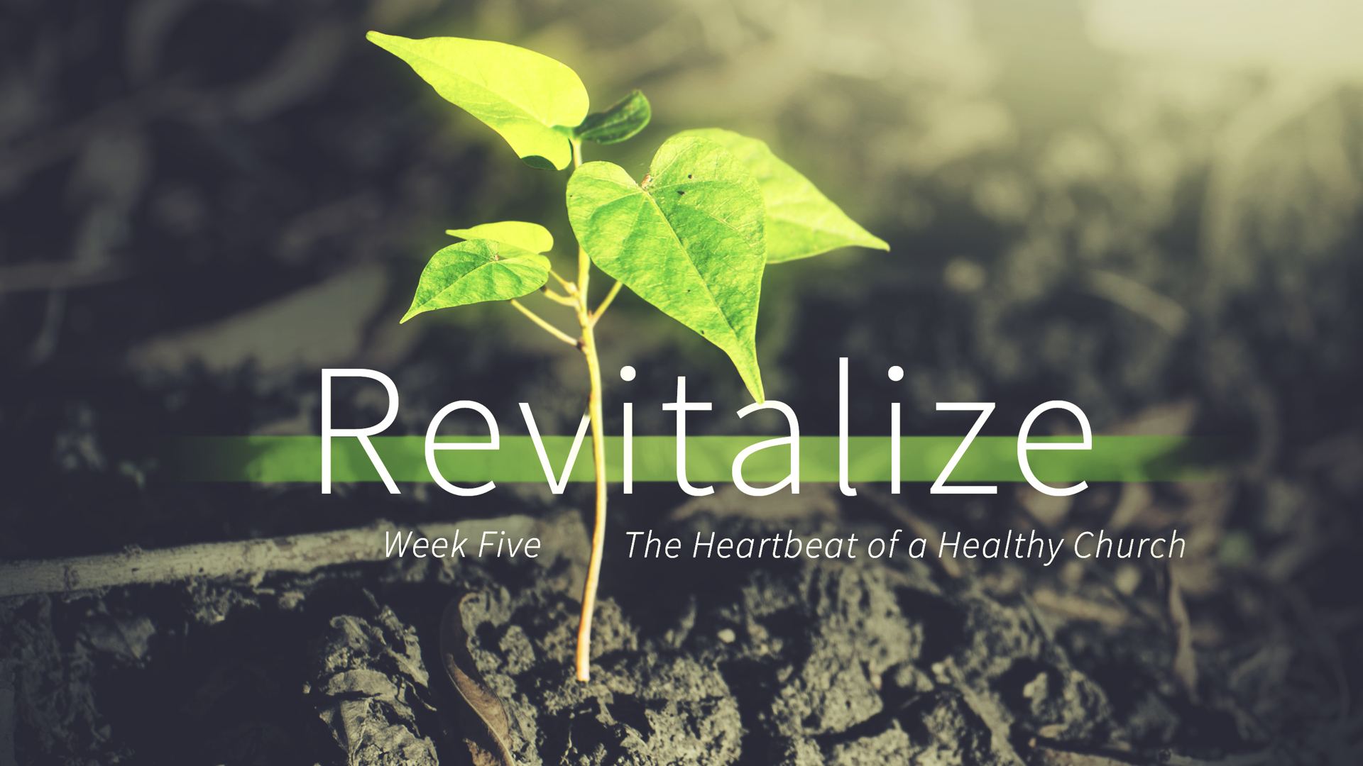 Revitalize - Week 5 - The Heartbeat of a Healthy Church copy.020.jpeg