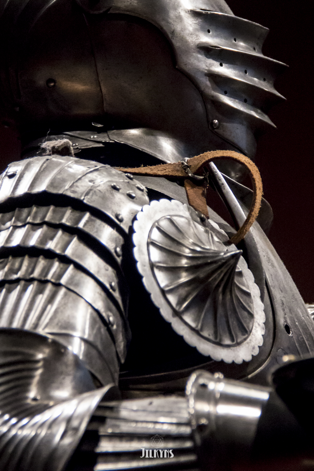 Armor The Field Museum Chicago photo by Jilkyns