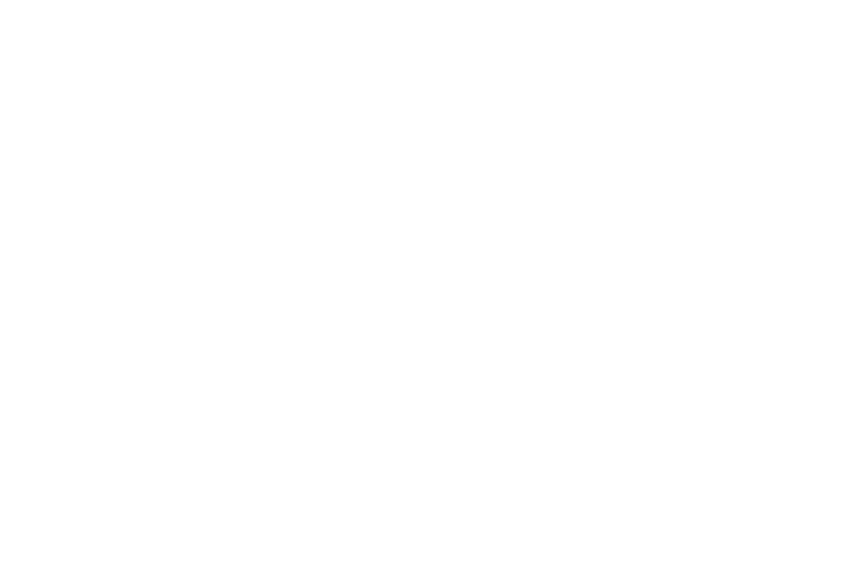 GOLD JURY PRIZE - Social Justice Film Festival - 2013.png