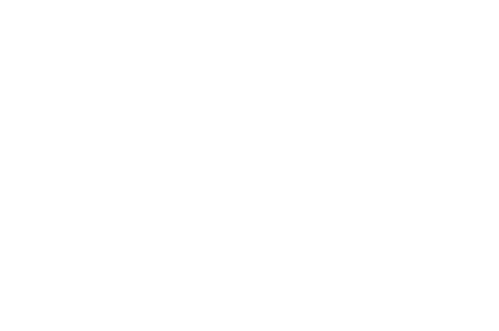 HONORABLE MENTION - Flathead Lake International Film Festival - 2014.png