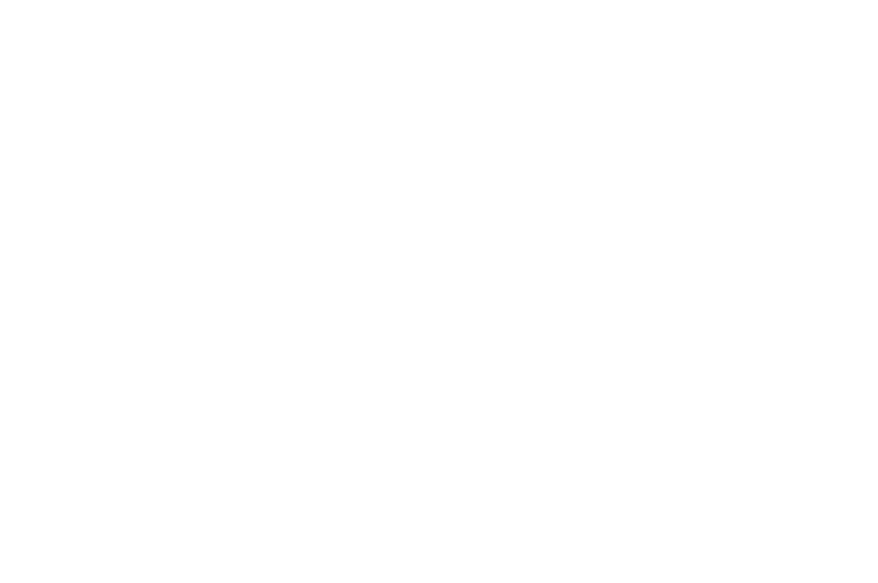 OFFICIAL SELECTION - Charleston International Film Festival - 2013.png