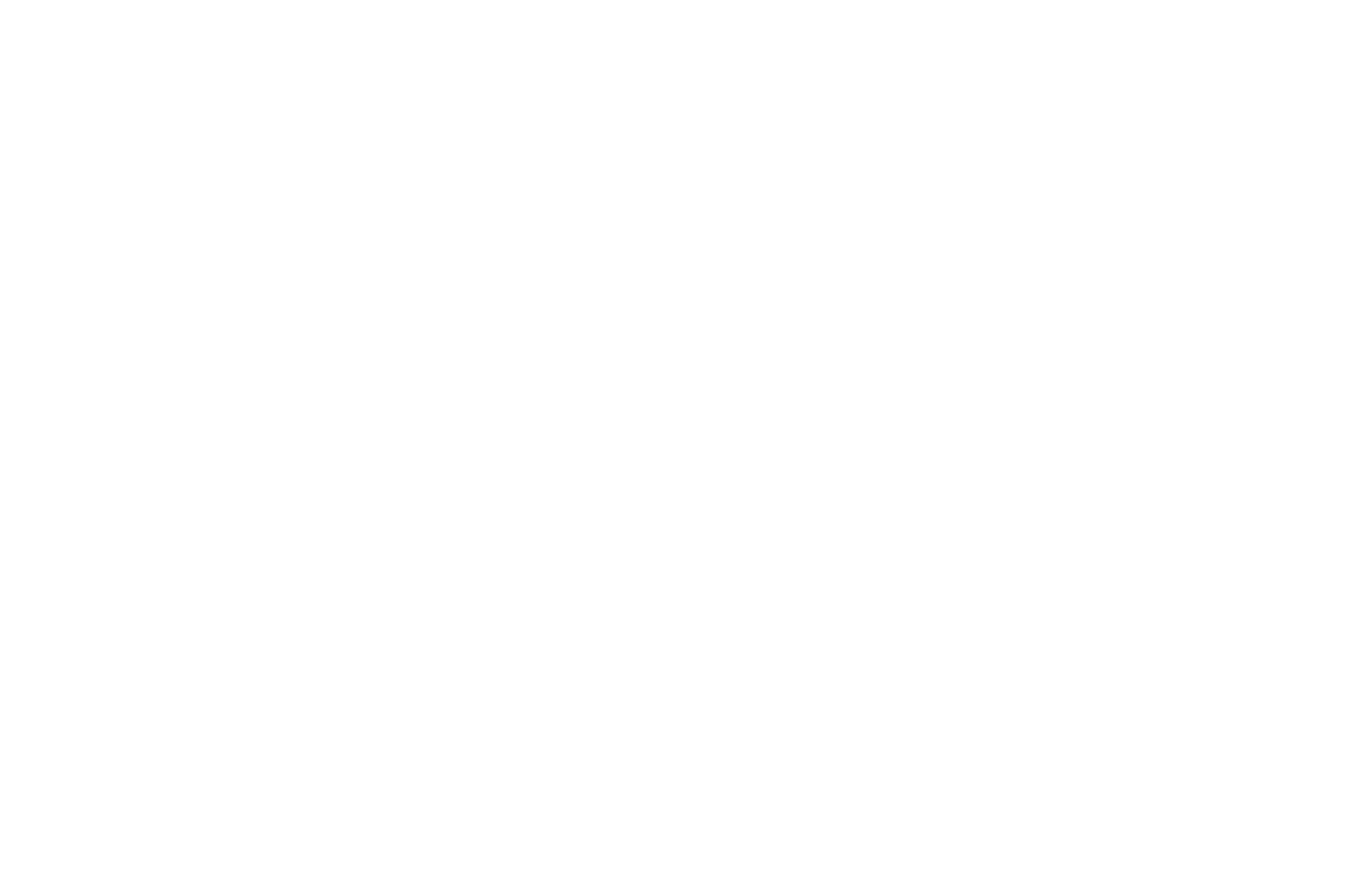 OFFICIAL SELECTION - Napa Valley Film Festival - 2013.png