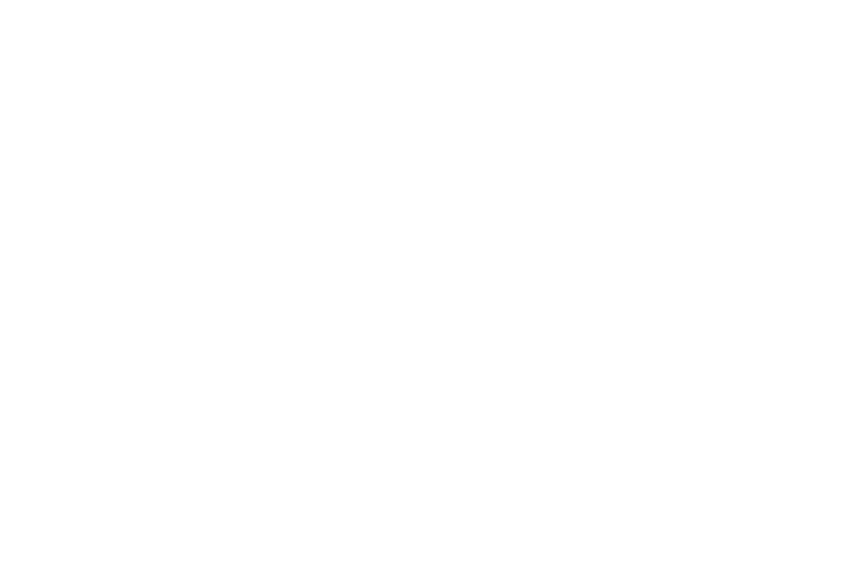 OFFICIAL SELECTION - Santa Barbara International Film Festival - 2014.png