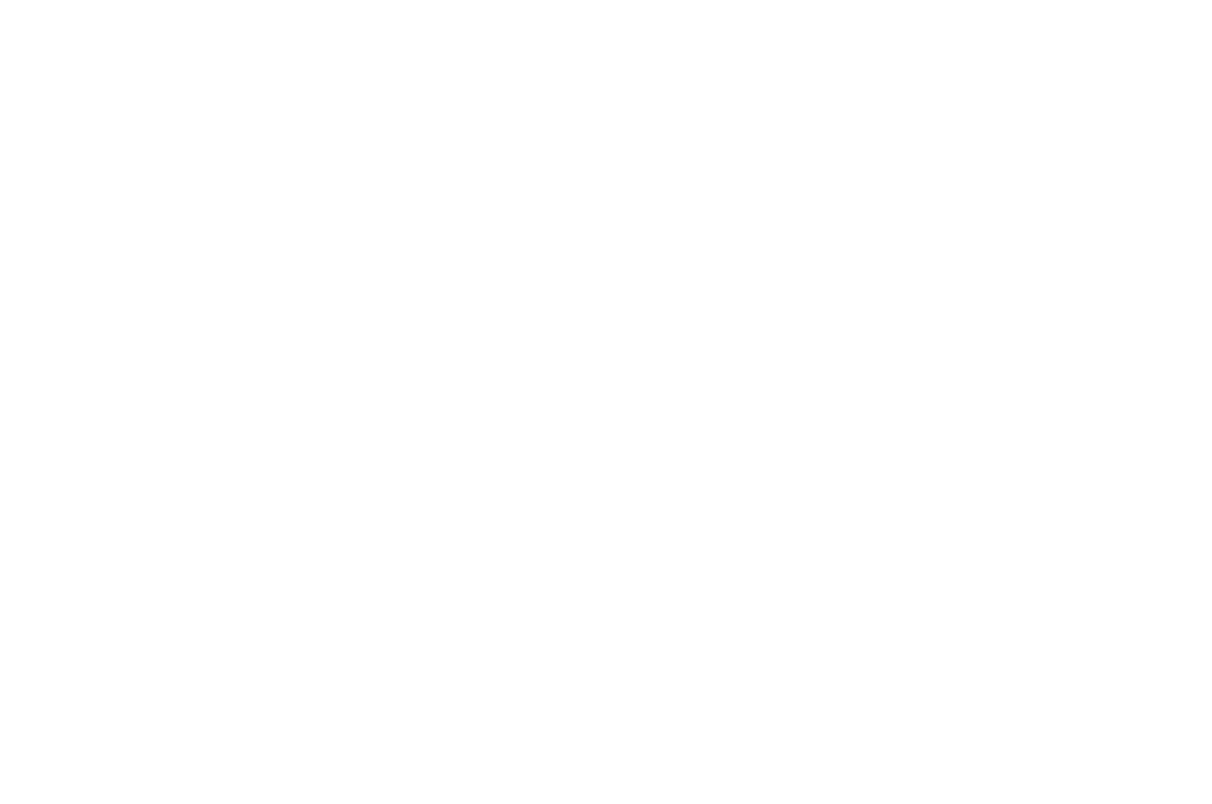 OFFICIAL SELECTION - Trail Dance Film Festival - 2012.png