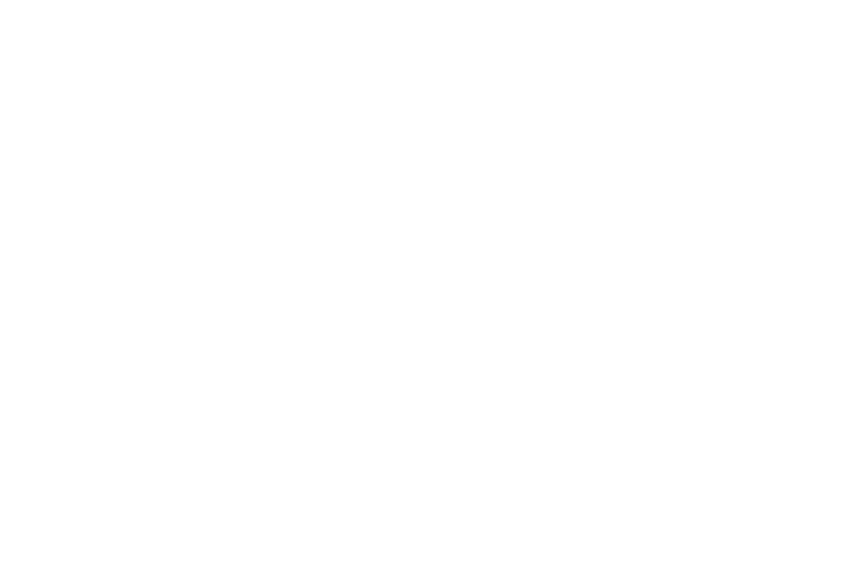 OFFICIAL SELECTION - Women and Minorities in Media Festival - 2014.png