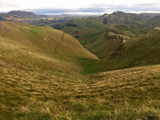 Te Mata Peak, Hawke's Bay