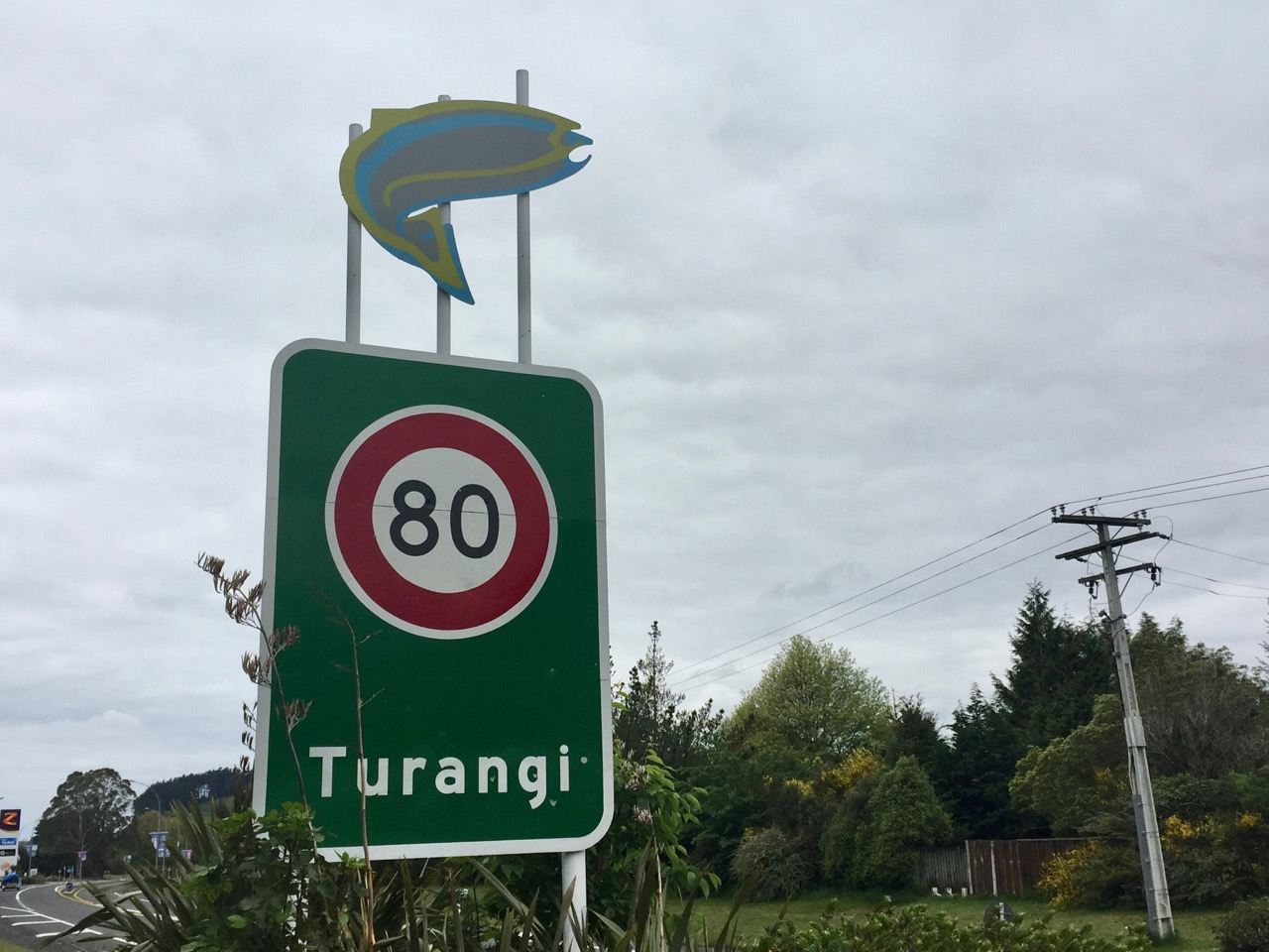 Turangi food trail