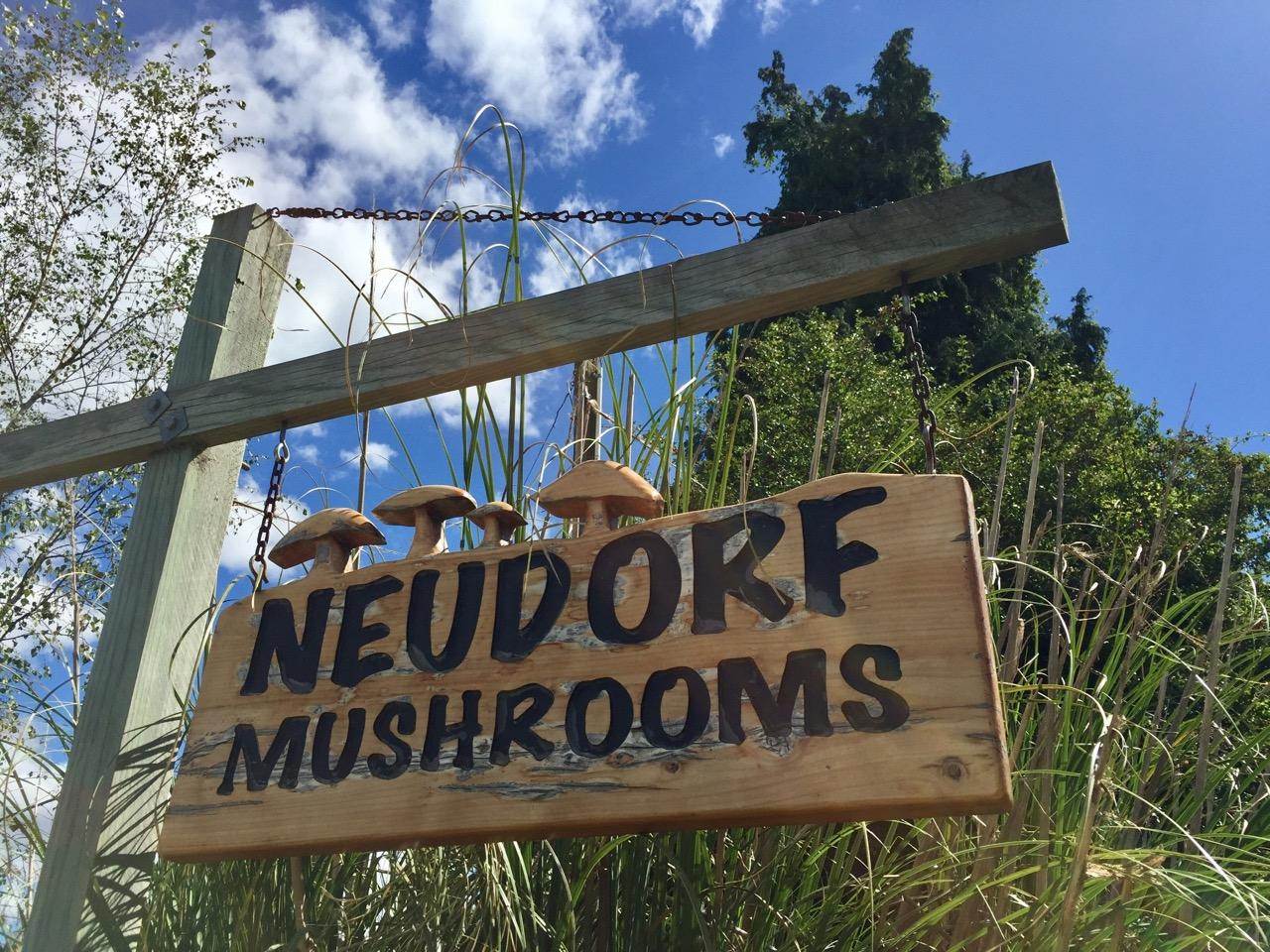 Neudorf mushrooms Moutere