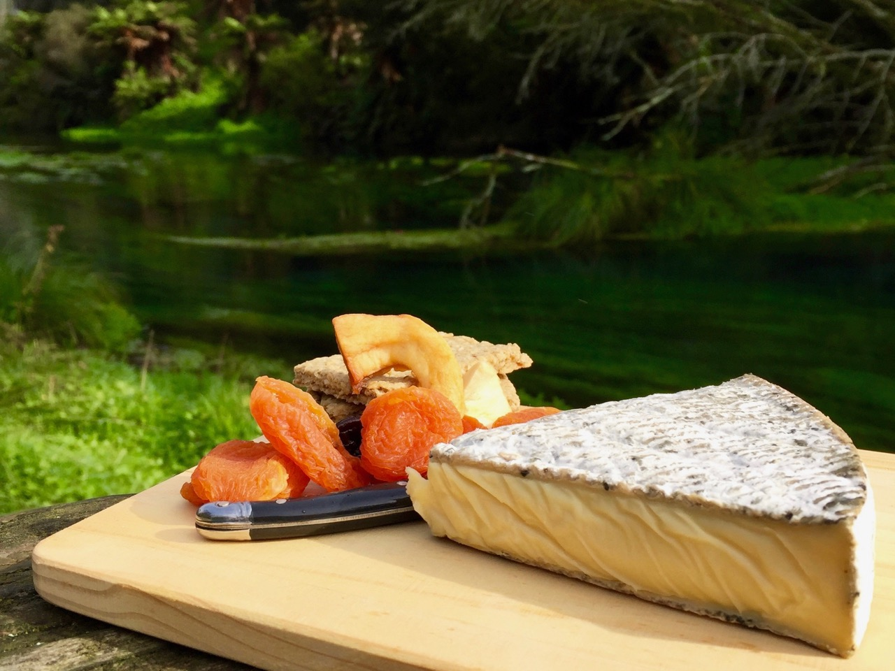 picnic cheese and fruit