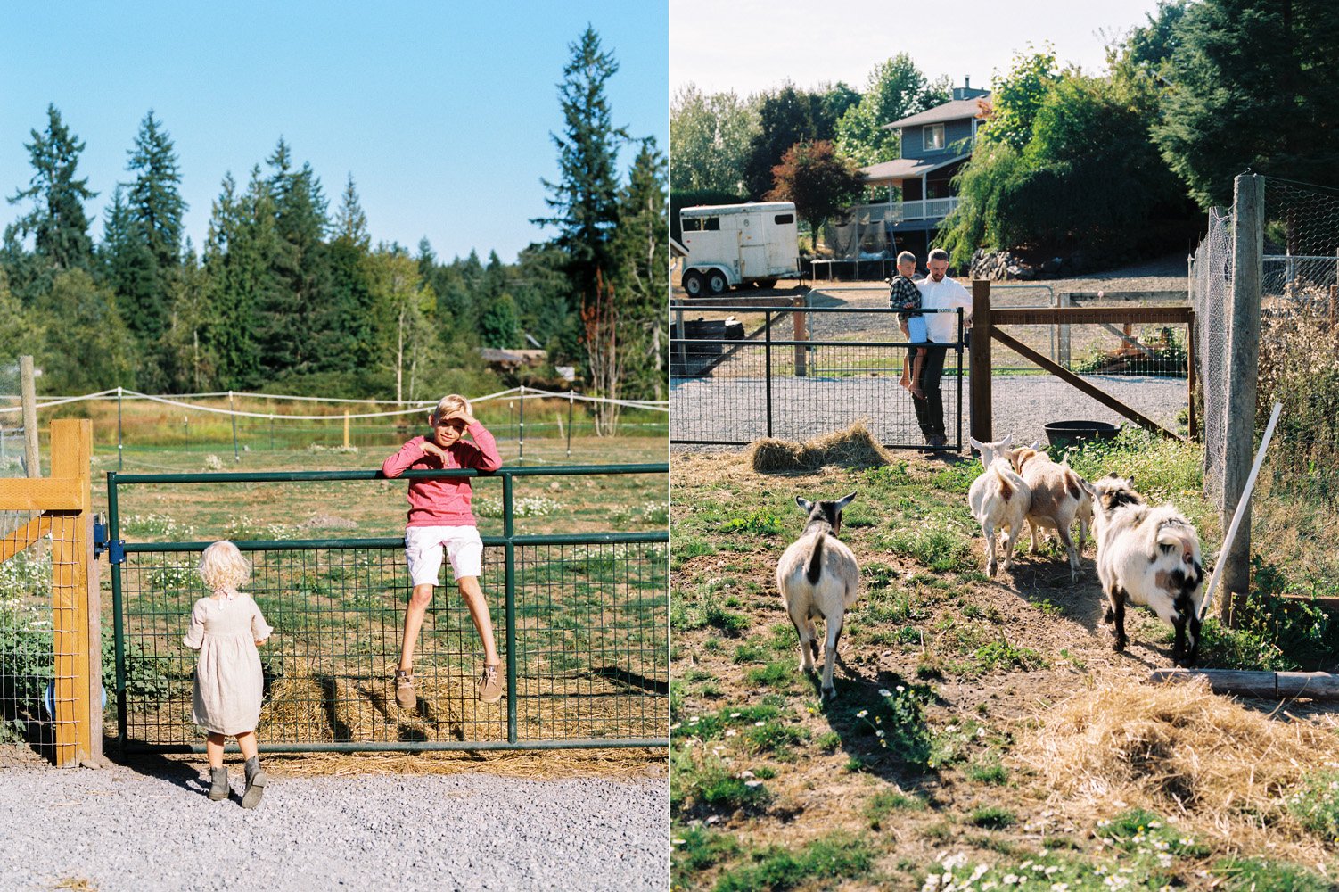 snohomish county farm family photography candid family photographer.jpg