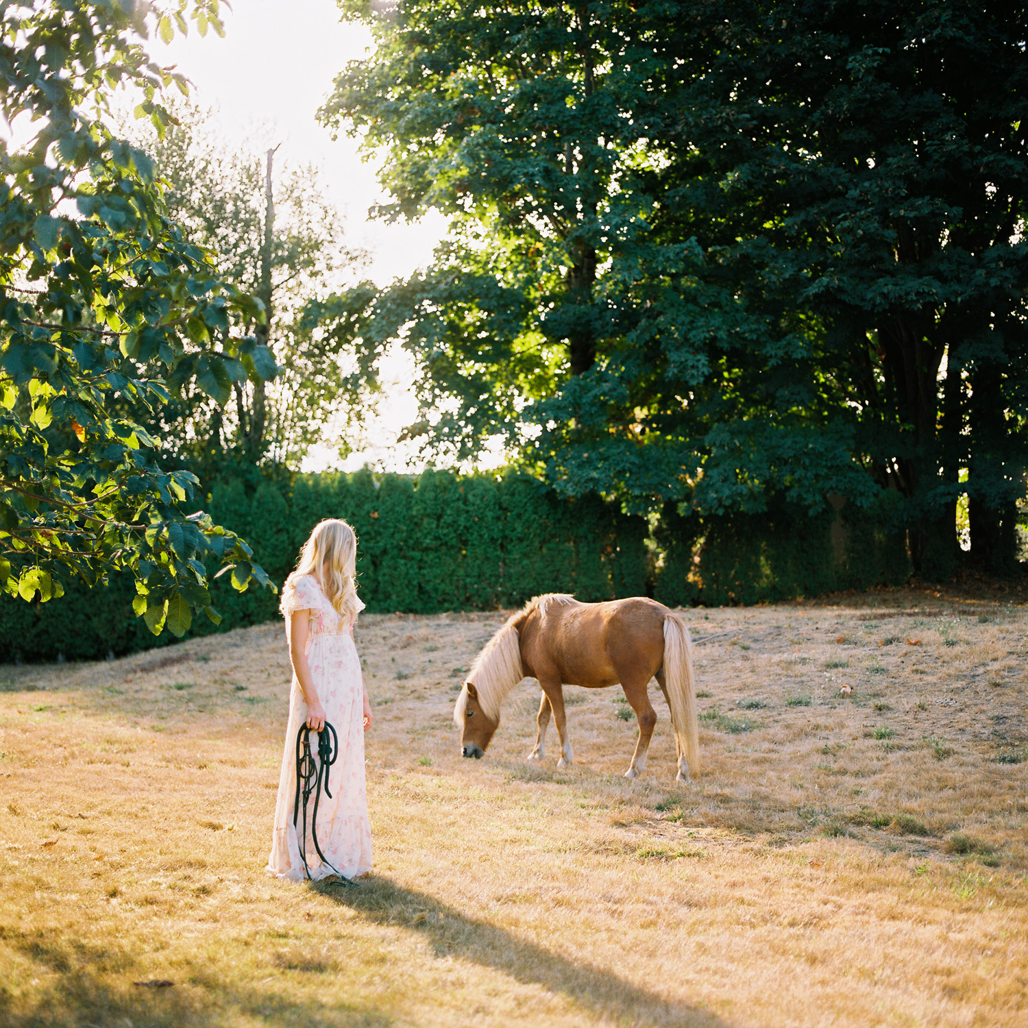 seattle equine photography snohomish family and horse photographer.jpg