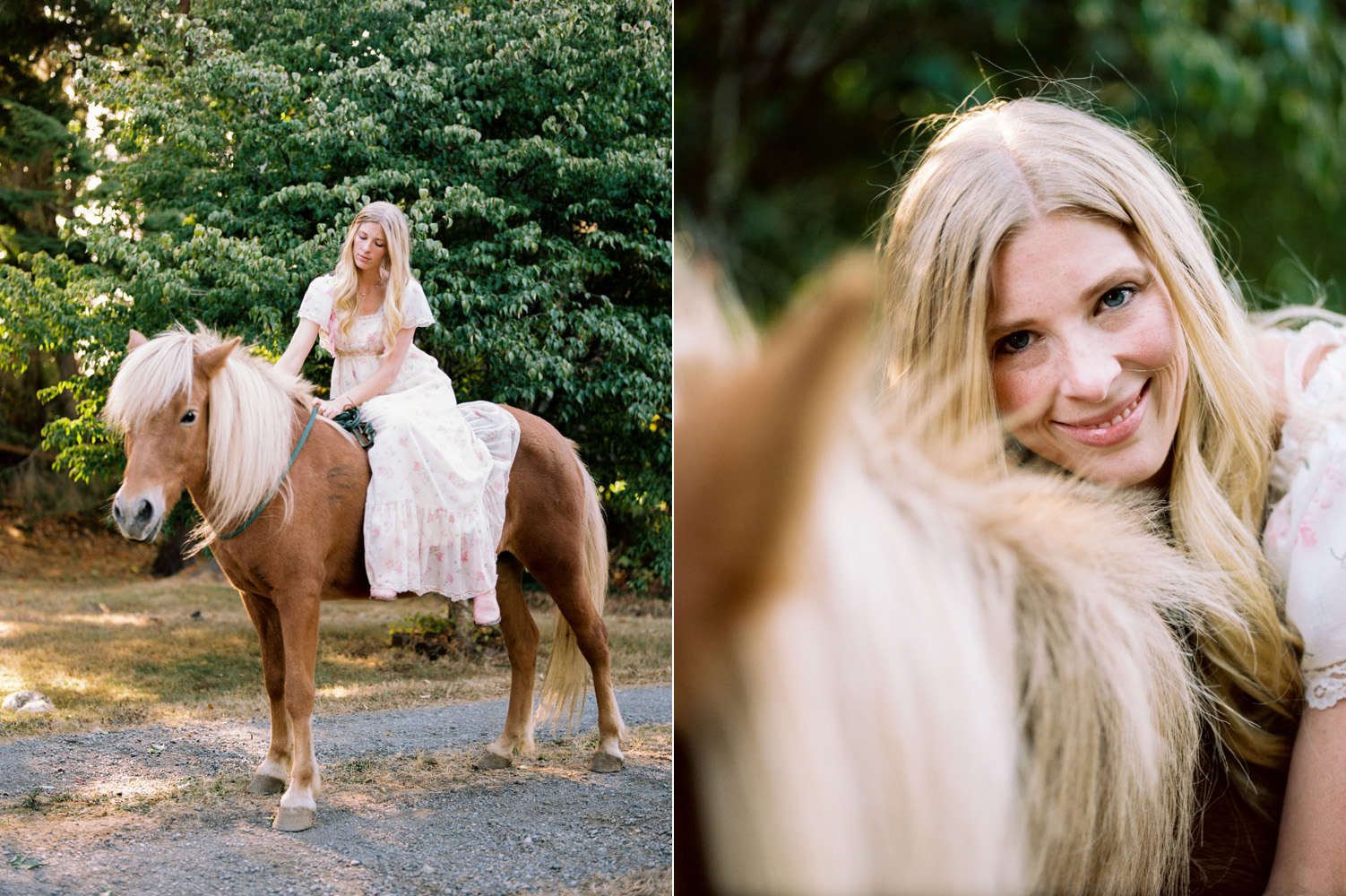 snohomish horse photography seattle family photographer.jpg