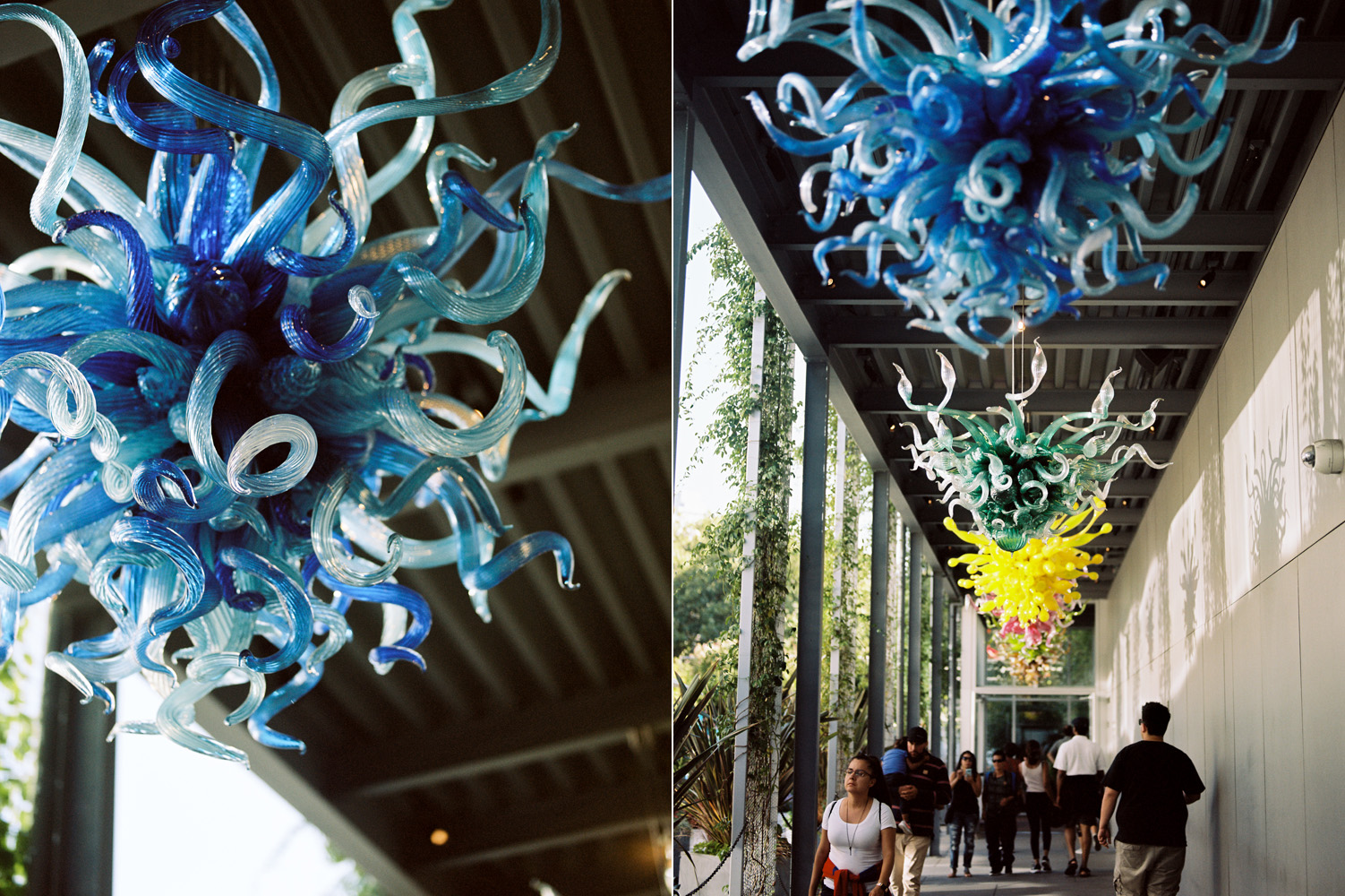 Chihuly Garden and Glass Seattle Wedding Venue Photography