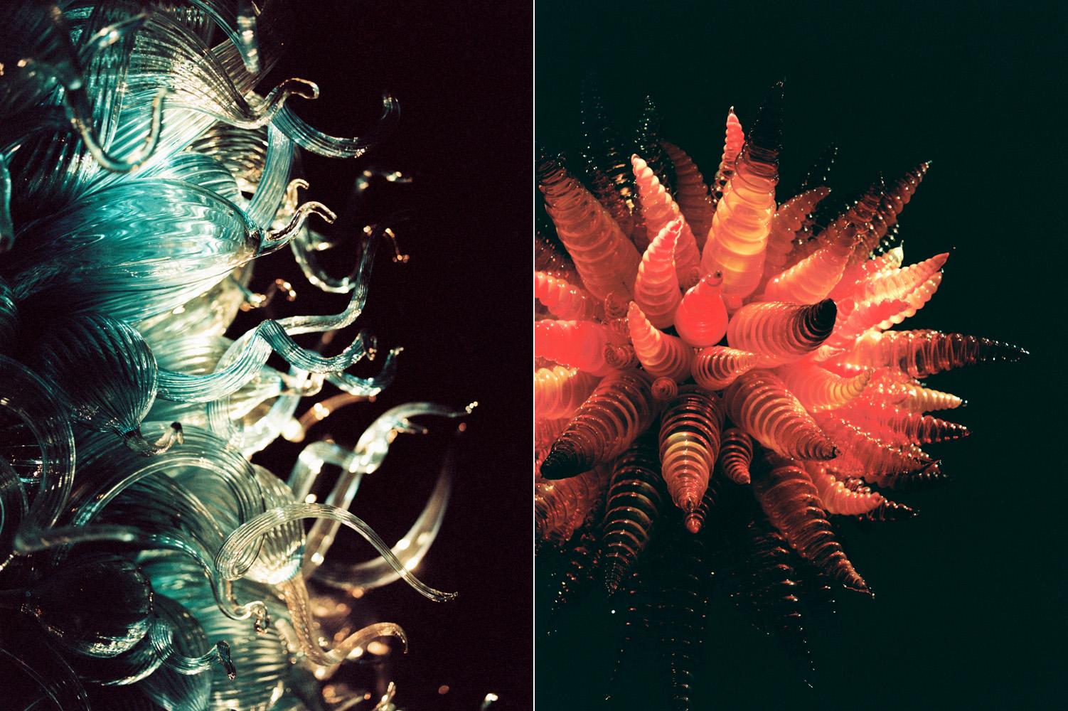 chihuly garden of glass 4.jpg
