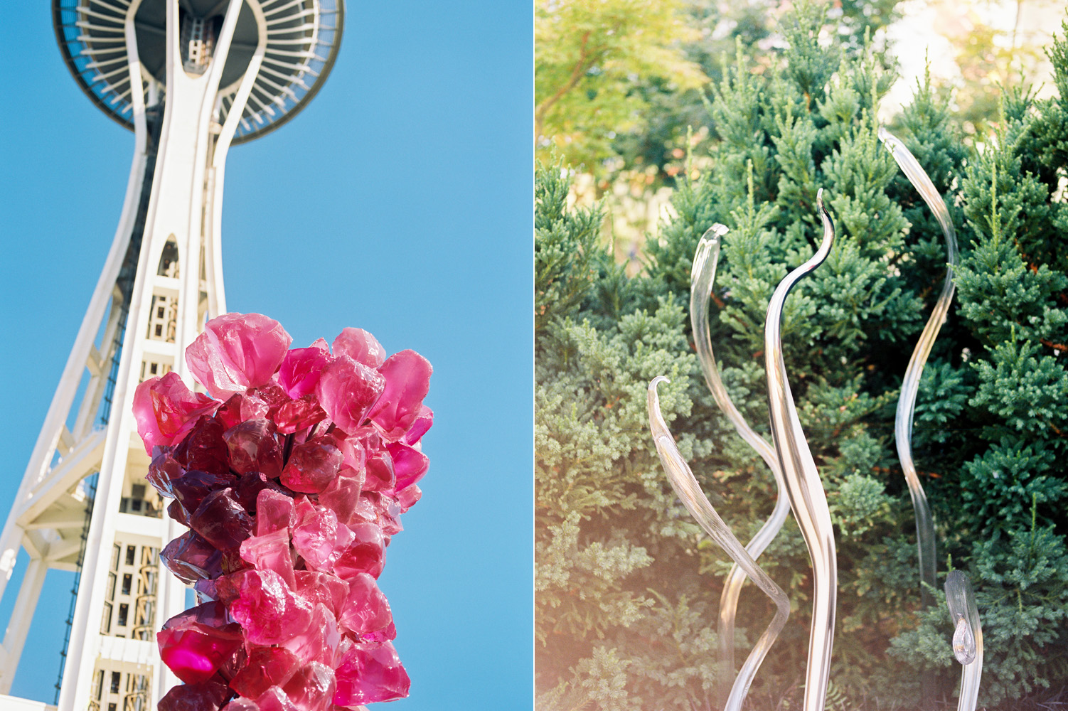 chihuly garden of glass space needle.jpg