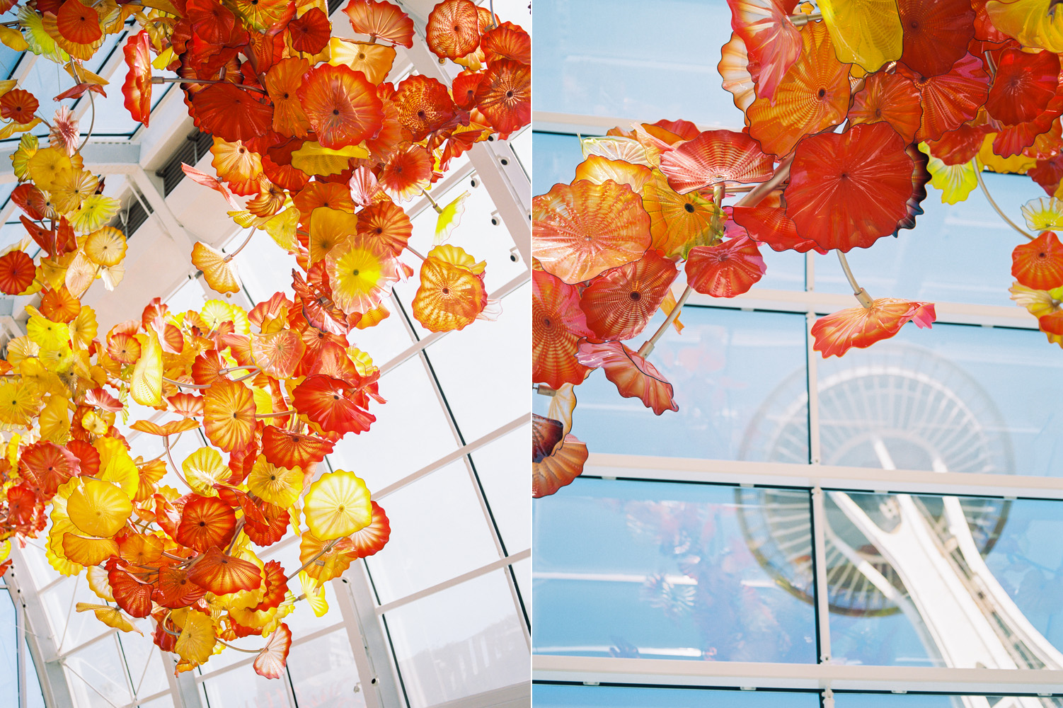 Chihuly Garden and Glass Seattle Wedding Venue Photography by the Space Needle