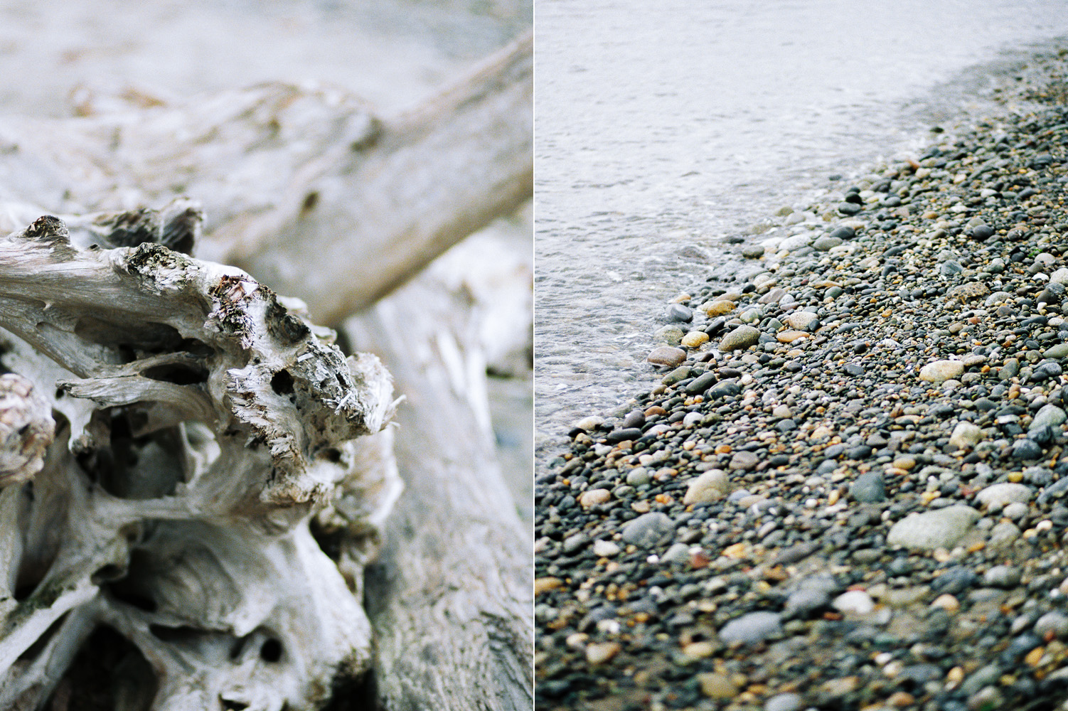 Deception Pass Pacific Northwest Coastal Film Photography.jpg