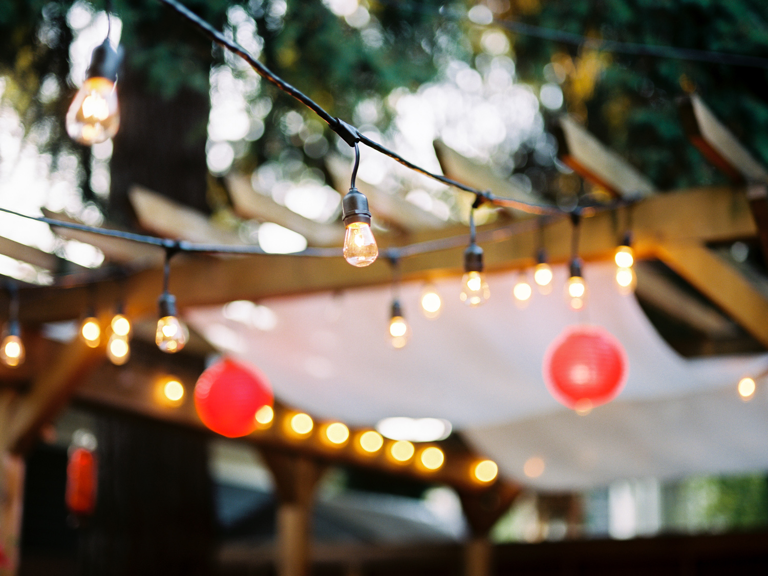 Film Photography from a Seattle Backyard Wedding.jpg