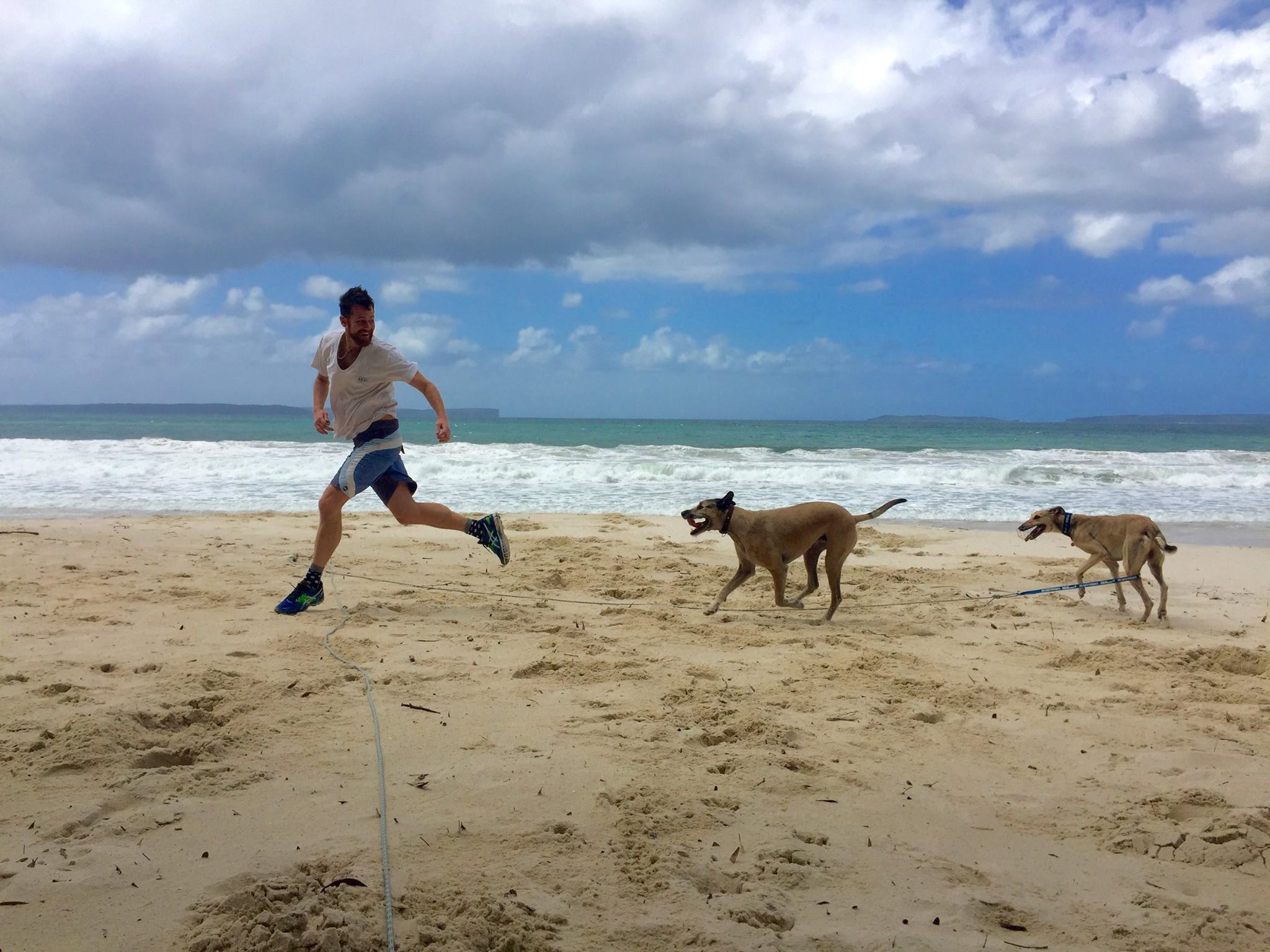 I'm running with Harvey and Liam at a beach near Huskisson, where Dean and I were camping for 5 days. Liam needs to wear a muzzle and be on a lead at all times as he is a rescue greyhound.