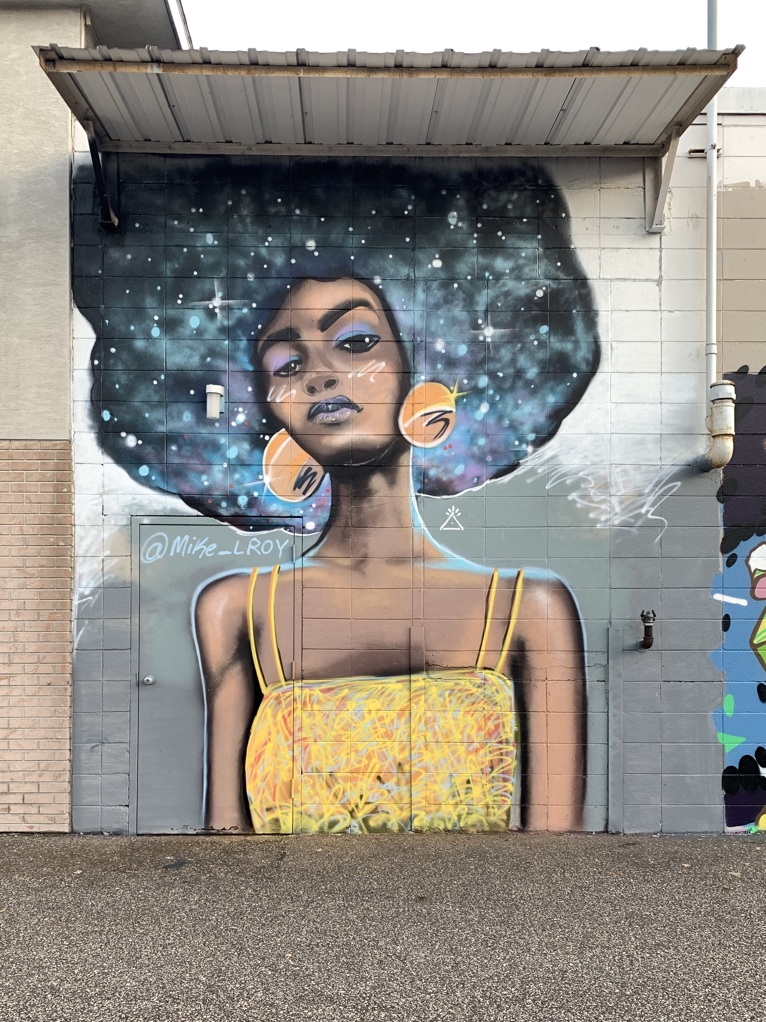 Mike Lroy Intergalactic Space Afro Woman Mural Monona, WI 2.jpg