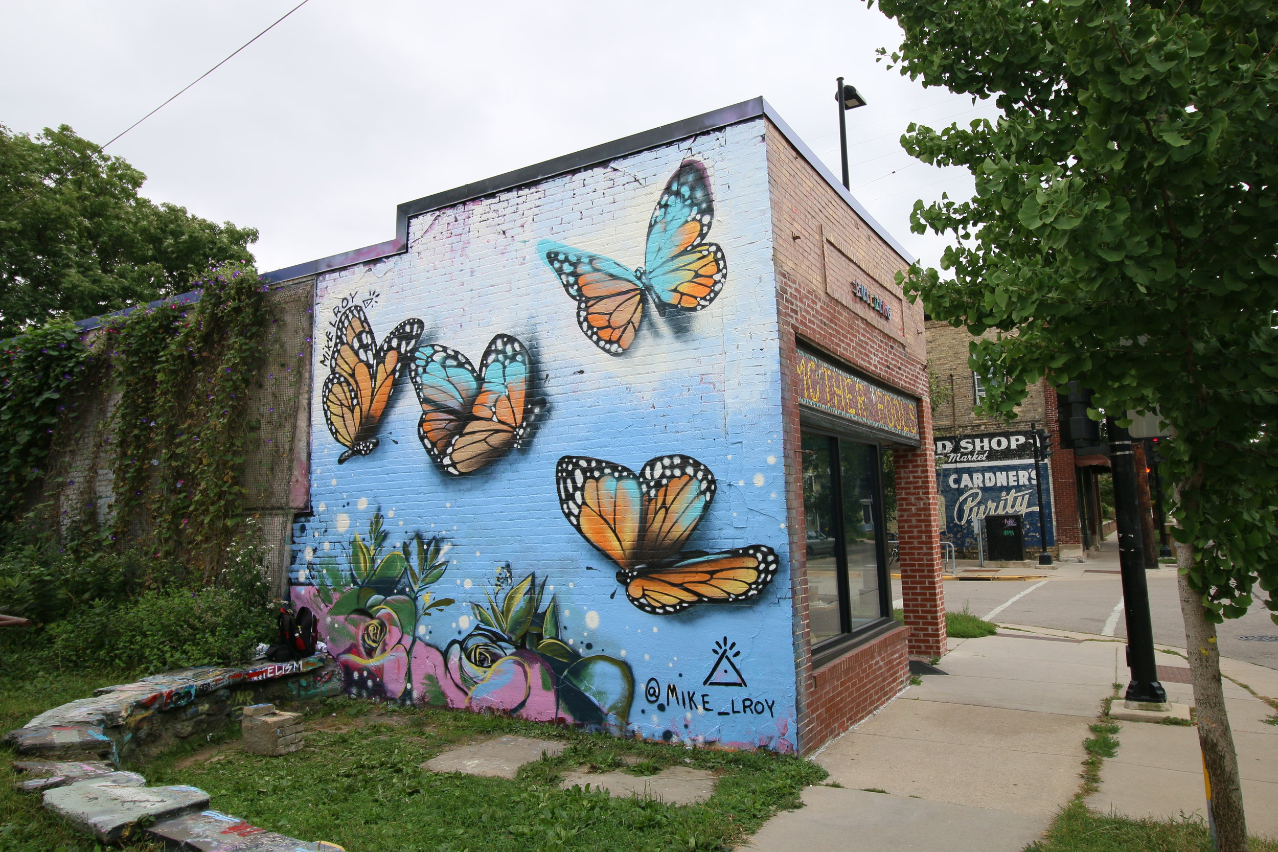 Mike Lroy Monarch Mural Mother Fools Coffeehouse Madison WI 2.JPG