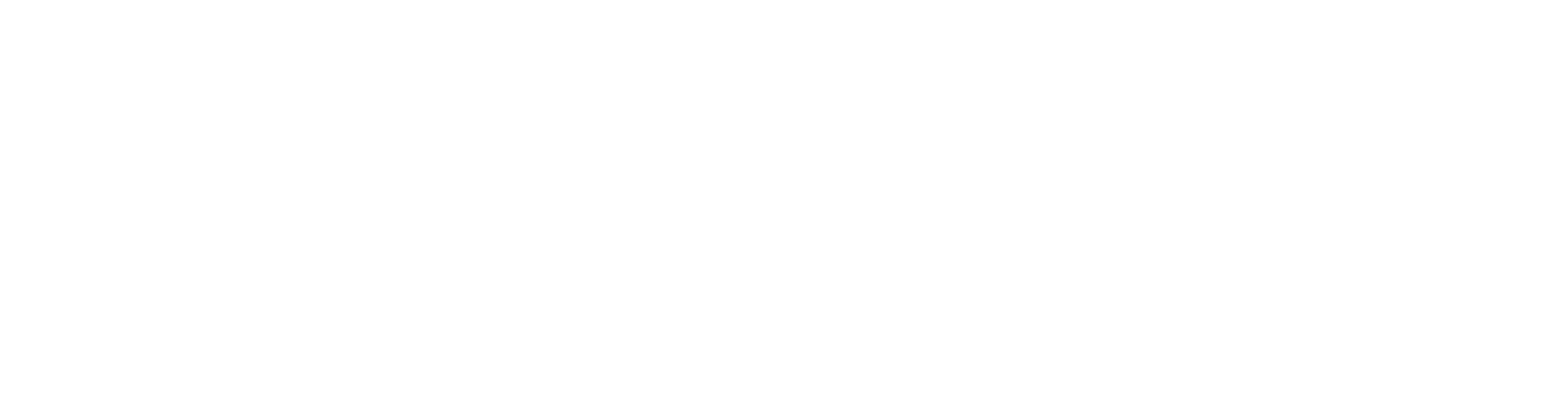 2018_Bontrager_logo_white_BikeSchool_Zermatt.png